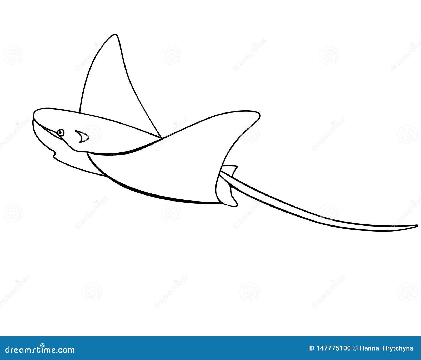 Electric Ramp, Ramp, Manta - fish, sea animal. Outline. Skat. Cramp-fish