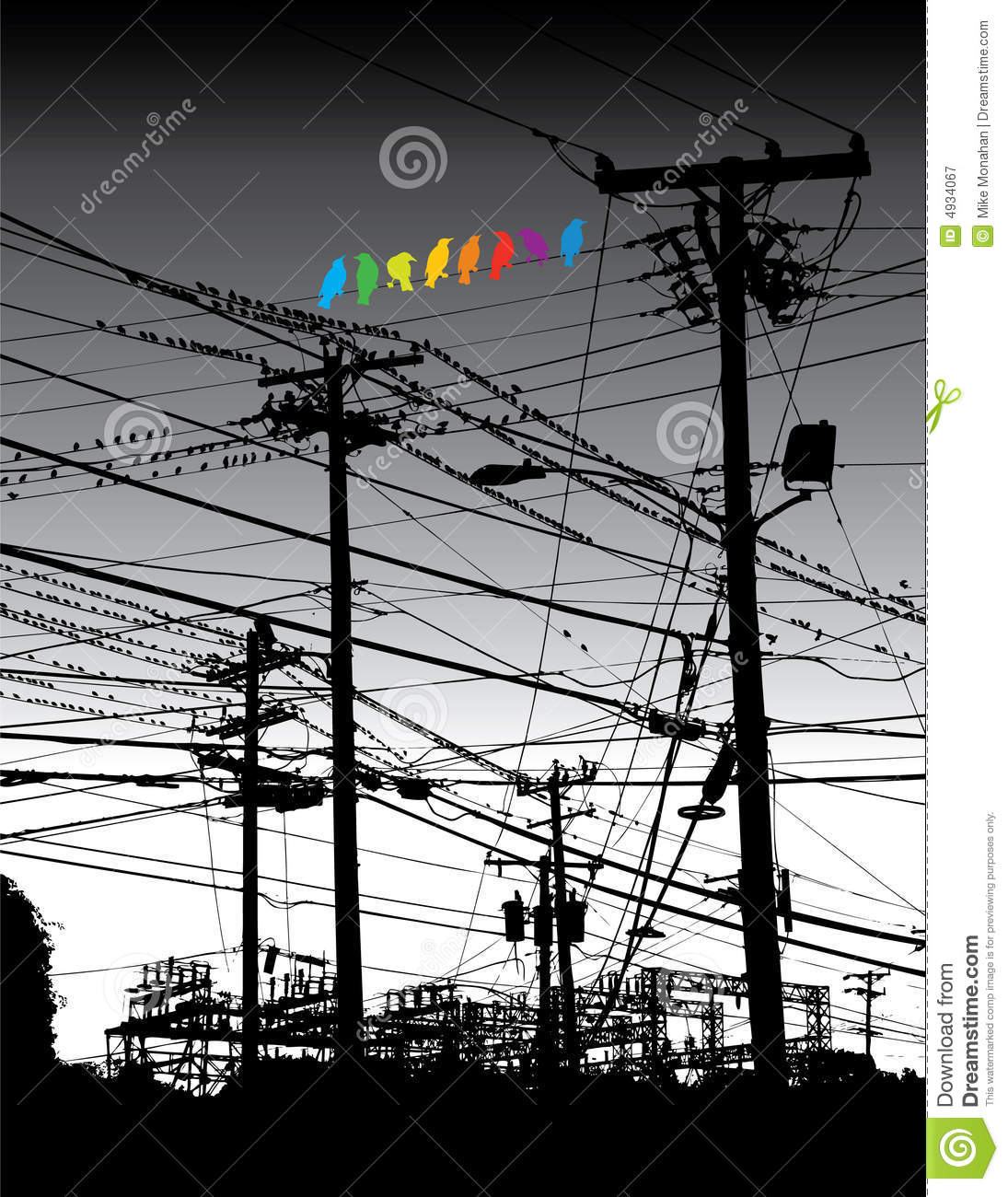 Electrical jungle and birds