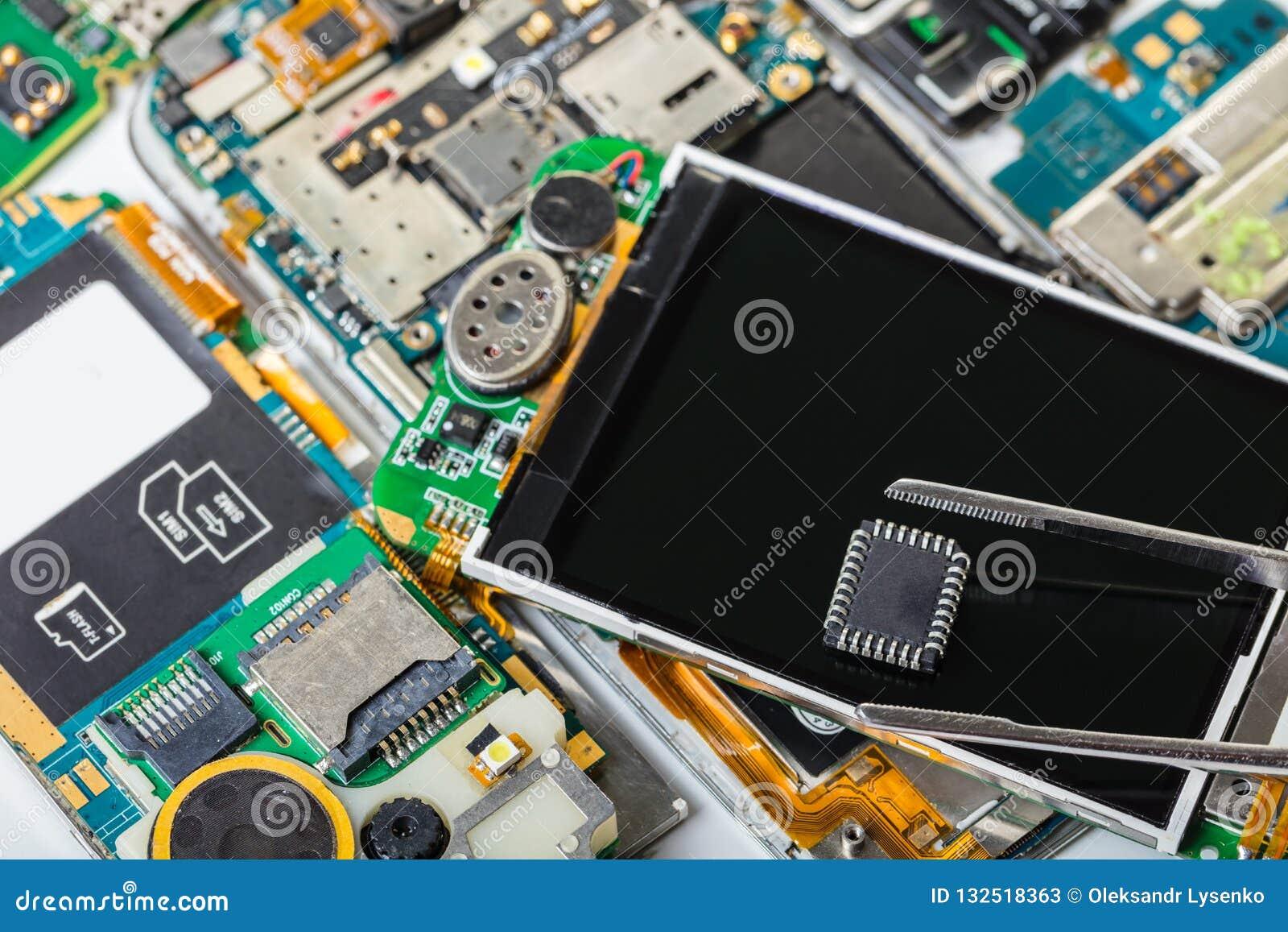 Electronic chip in tweezers