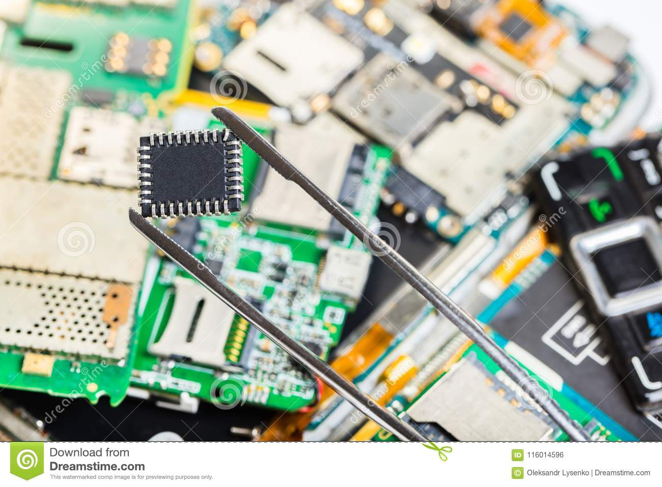Electronic chip in tweezers
