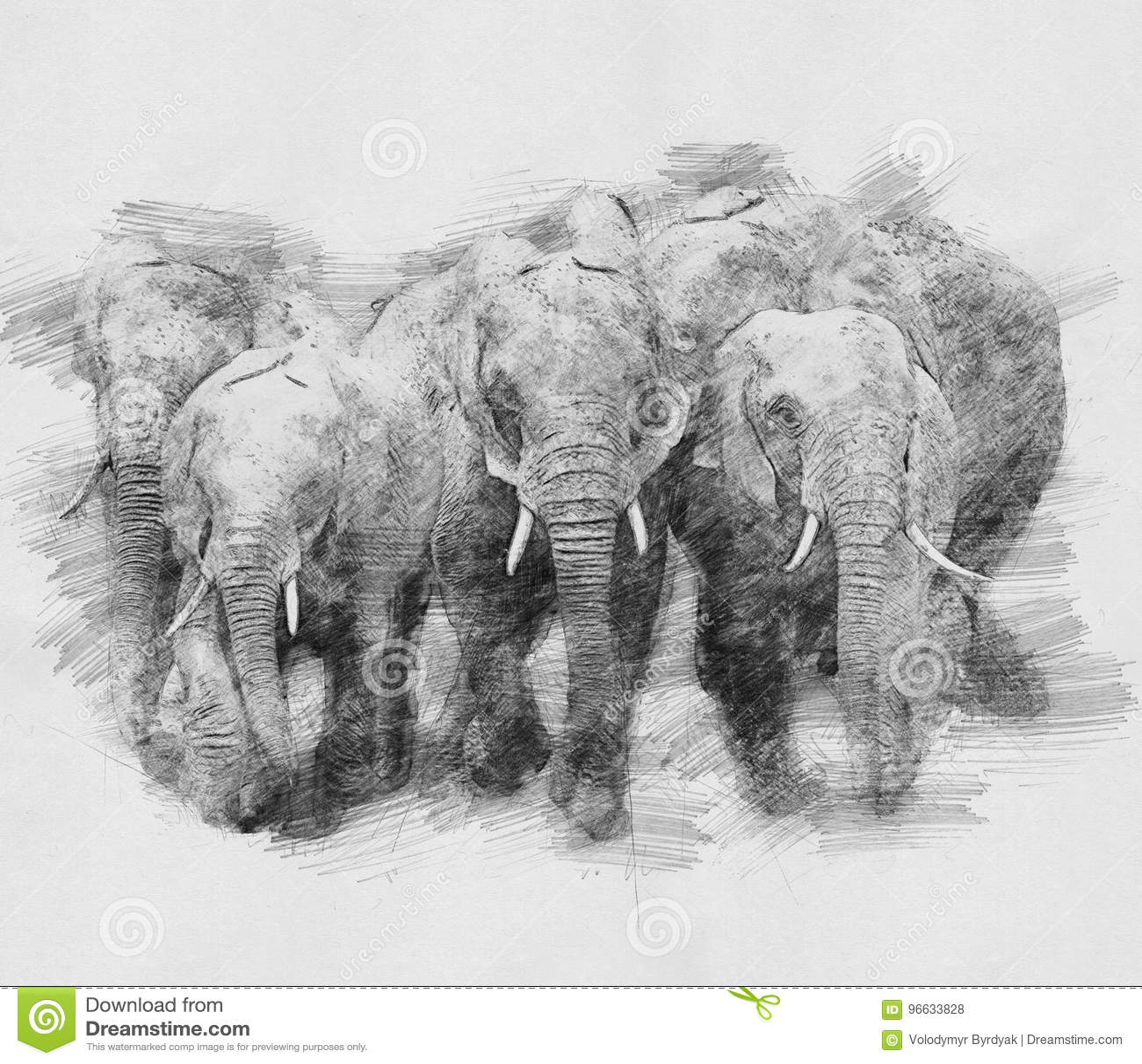 d48a9f2a9858 Elefant Skizze Mit Bleistift Stock Abbildung - Illustration von ...