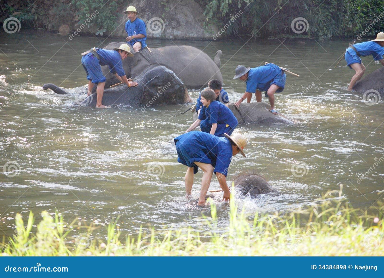 Elefantbadning