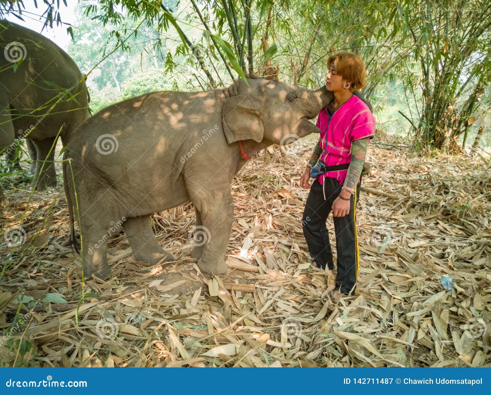 Elefante del bambino con la gente esperta della tribù