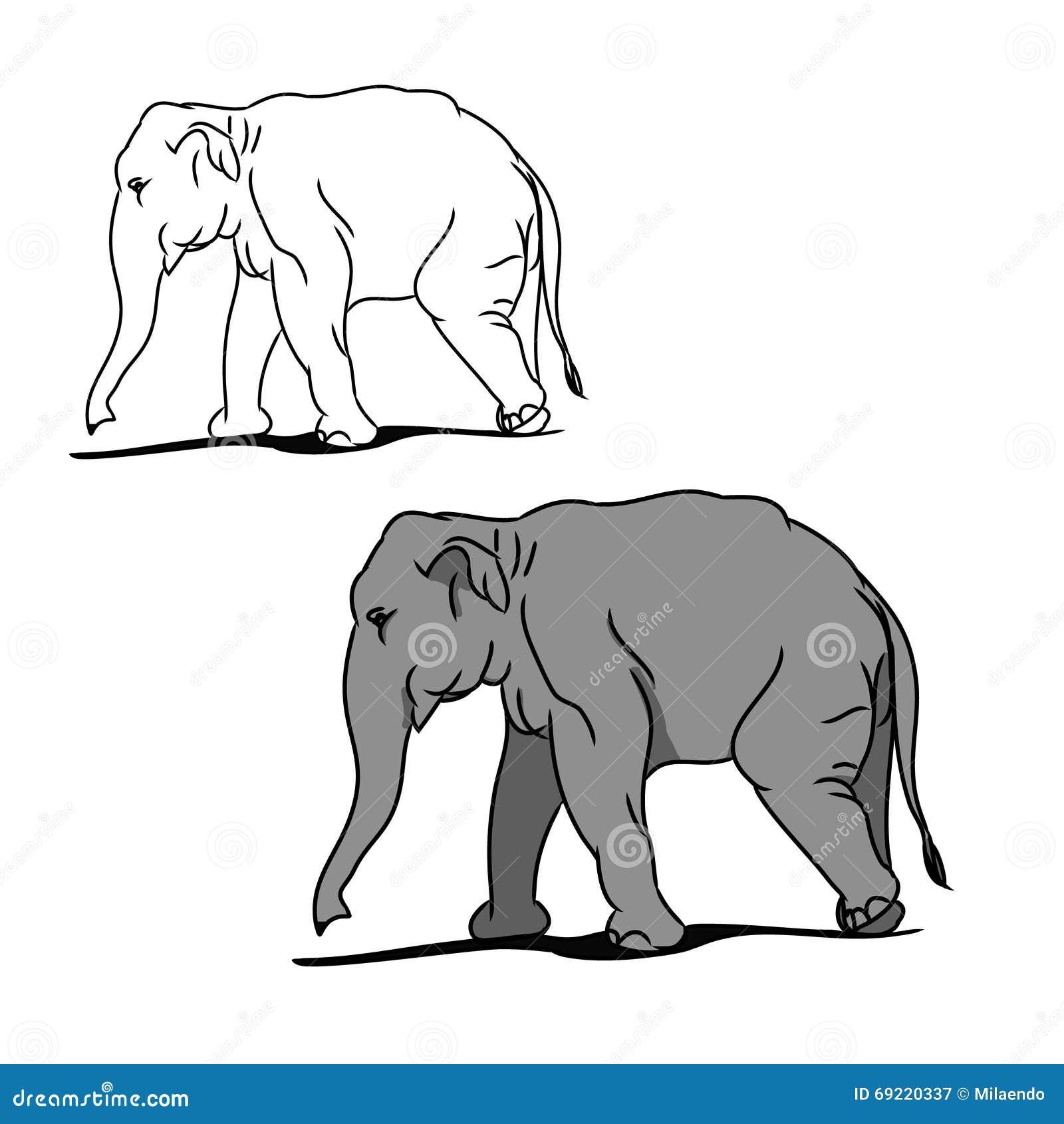 Elefante Grande Gris (para Colorear) 02 Ilustración del Vector ...