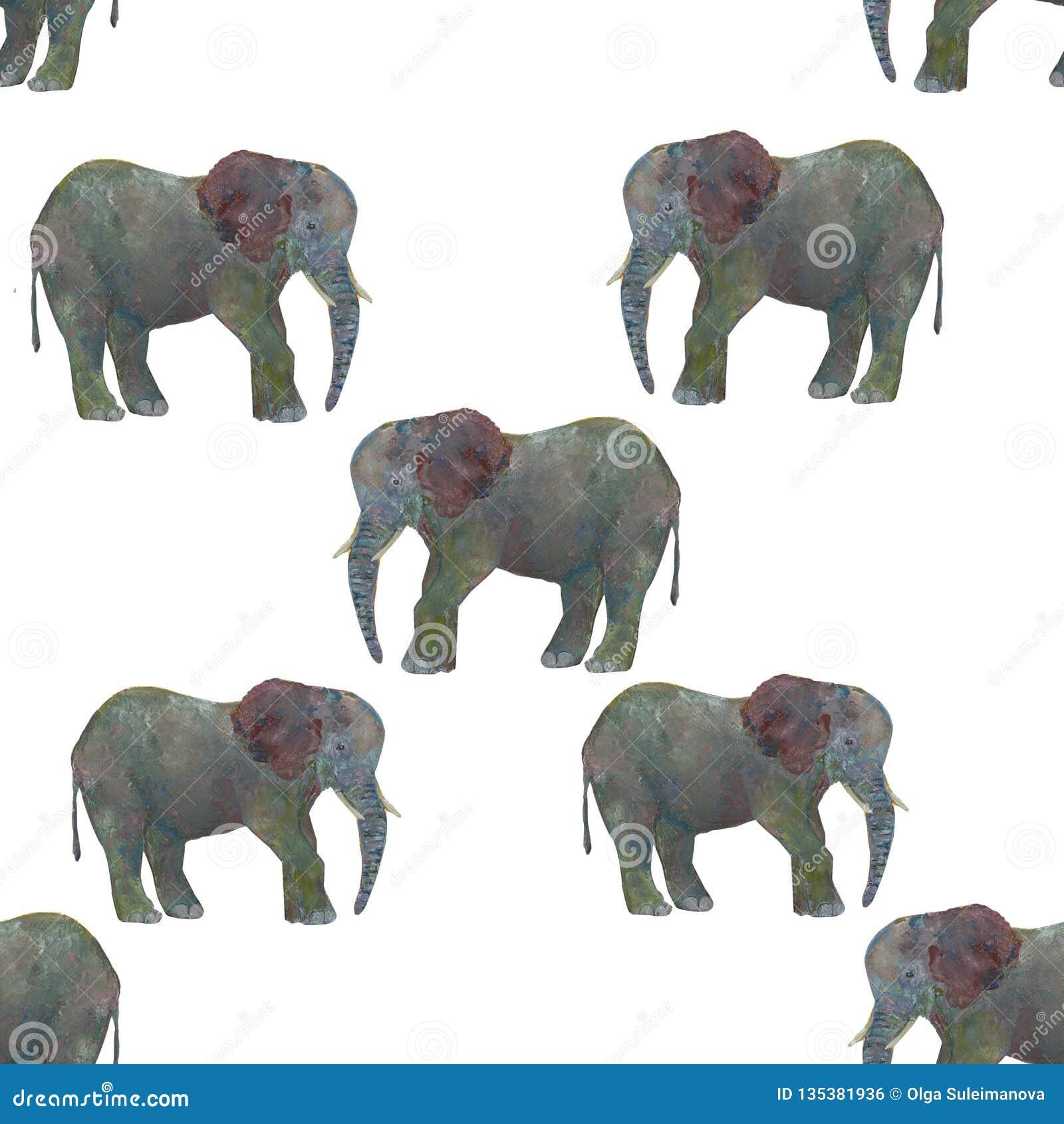 Elefante inconsútil de la acuarela del modelo aislado en el fondo blanco