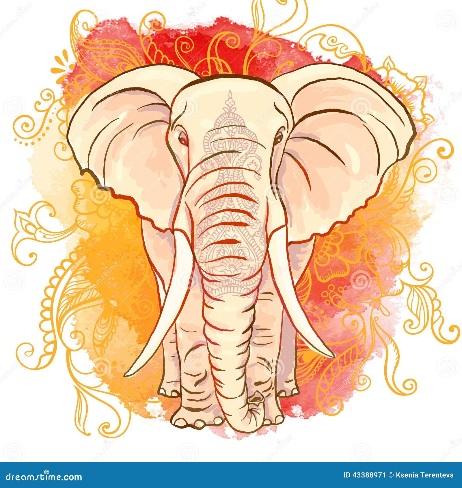 Elefante indiano do vetor na mancha da aquarela