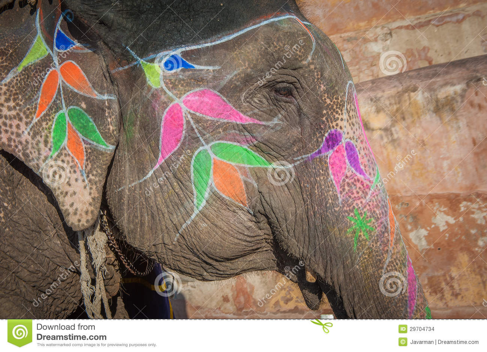 Elefante colorido en Jaipur, Rajasthán, la India