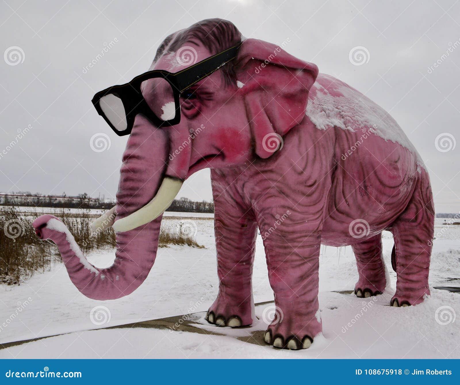 Elefante rosa nella bufera di neve