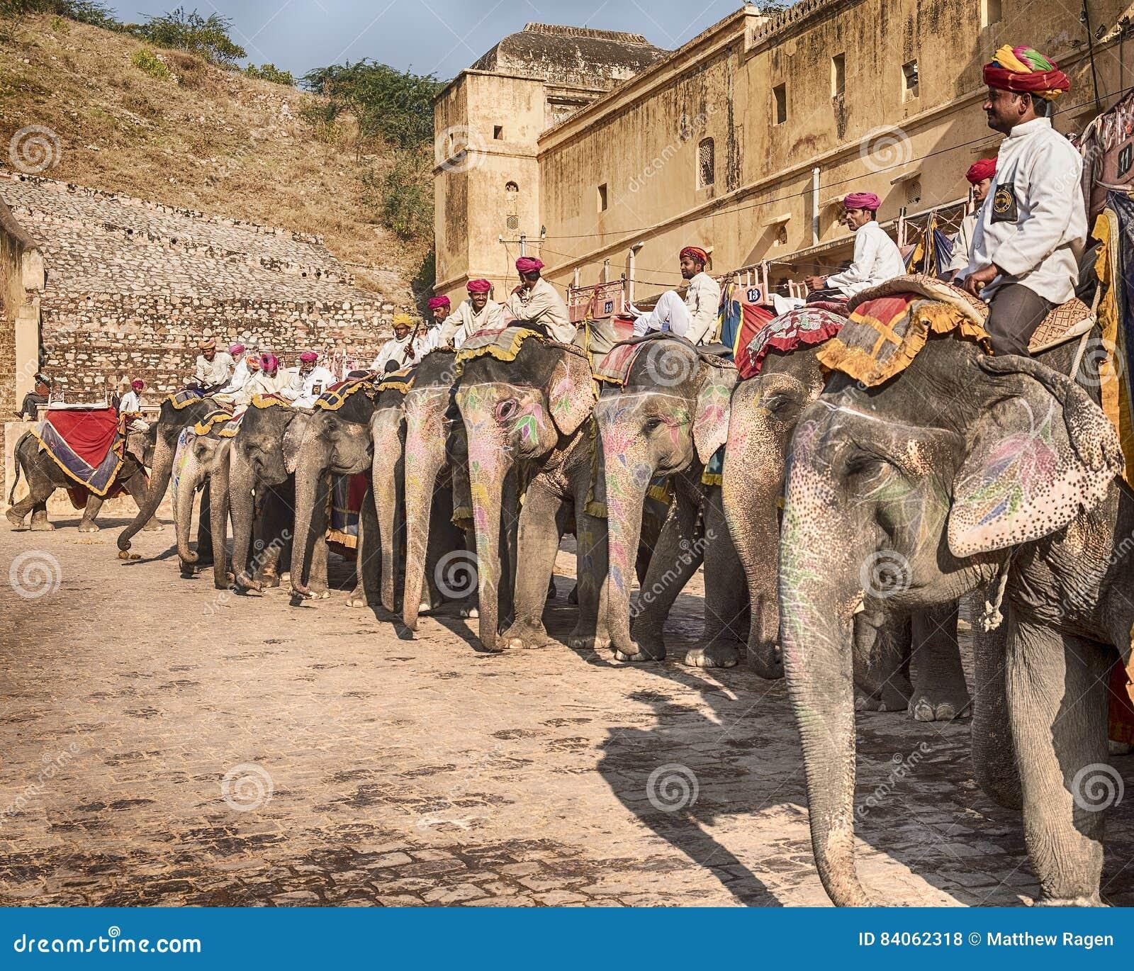 Elefanter på Amber Fort