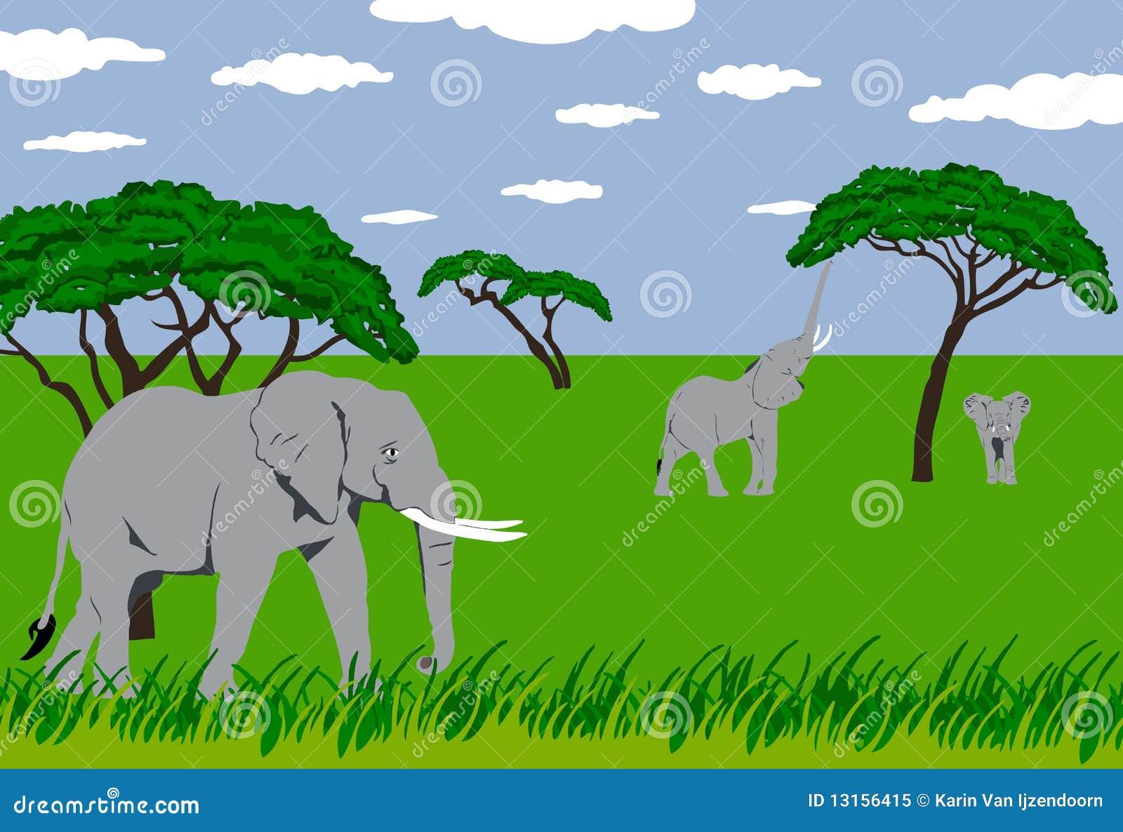 Elefantes en prado