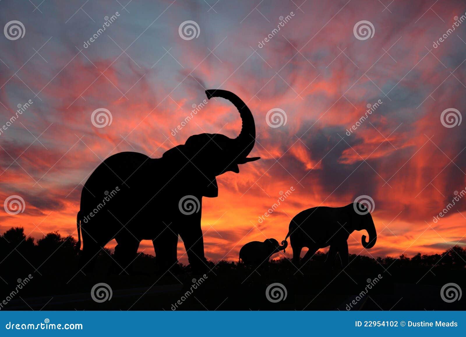 Elefantes en una puesta del sol de Serengety