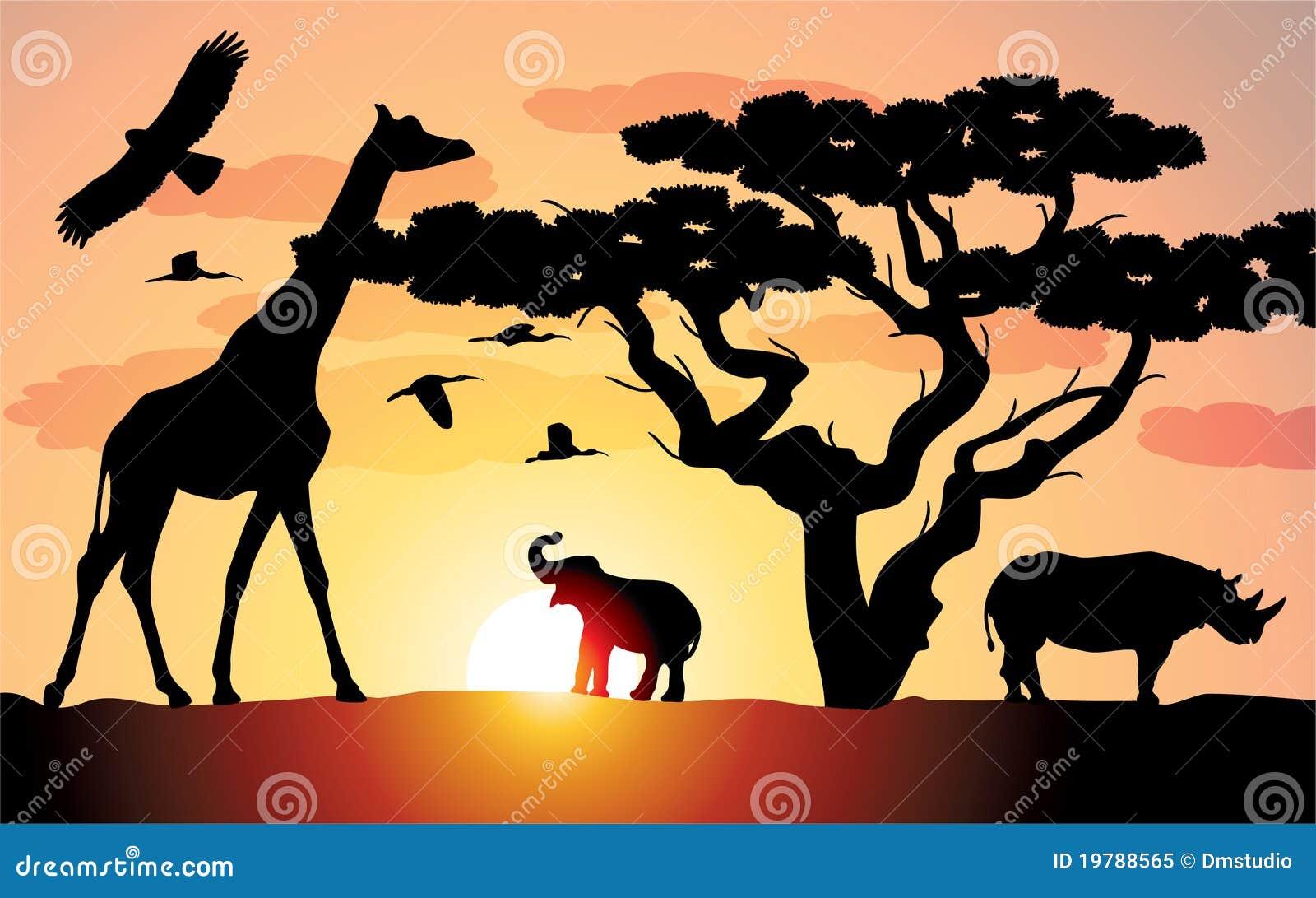 Elefantgiraffnoshörning