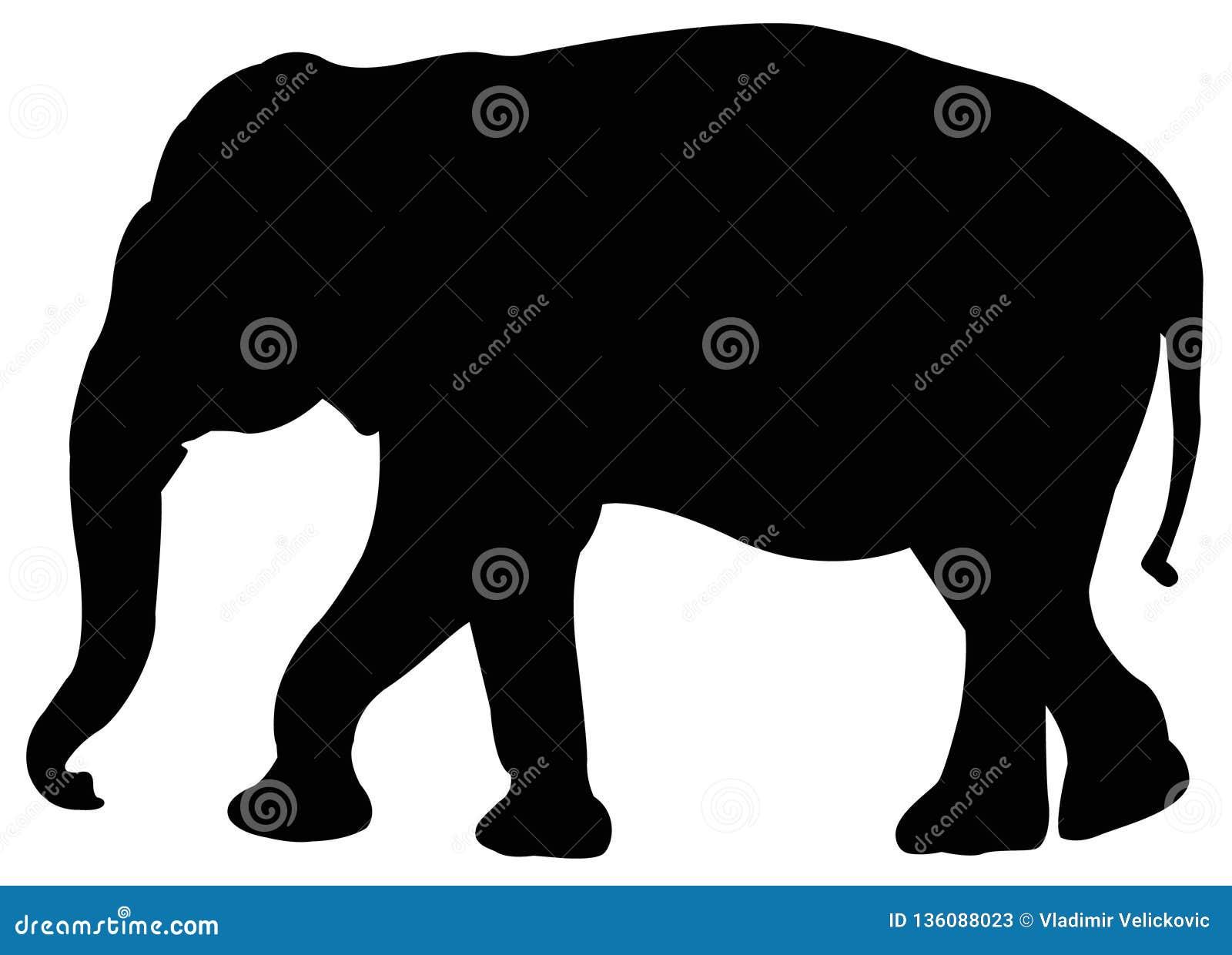 Elefantschattenbild - großes Säugetier der wild lebenden Tiere in Afrika und in Asien