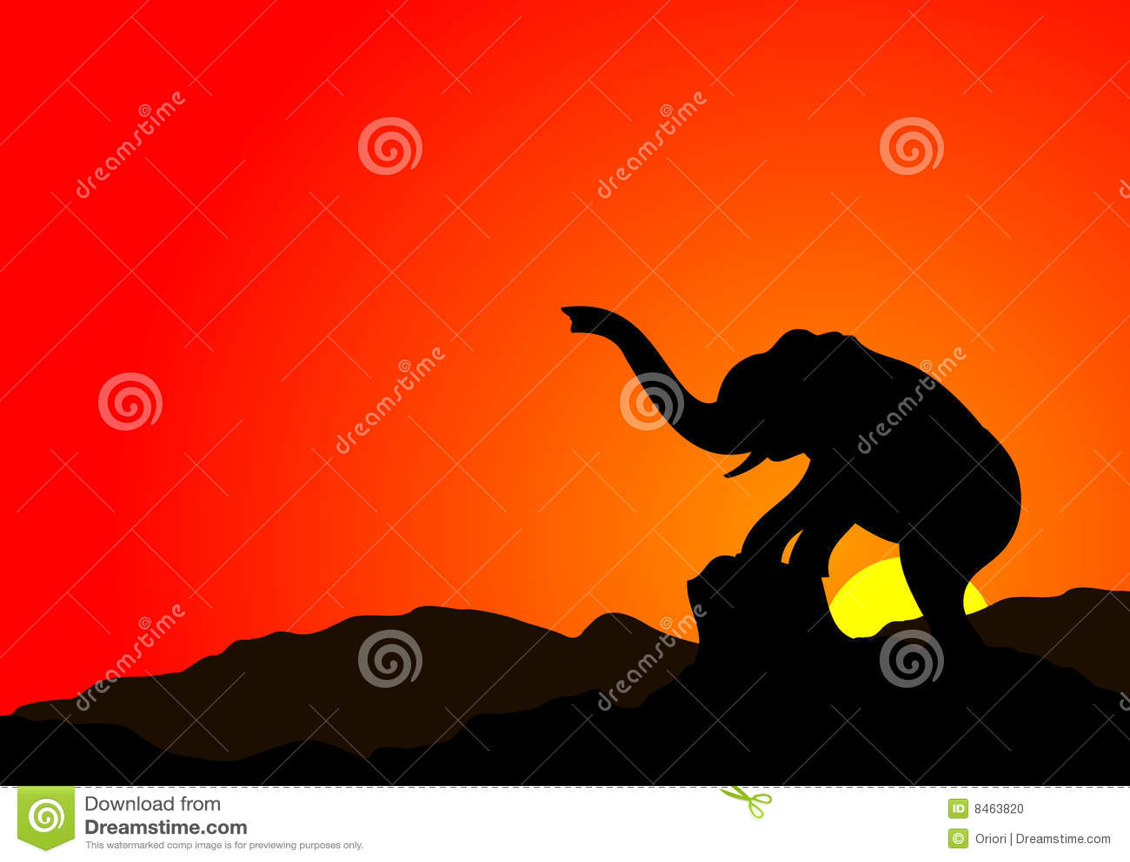 Elefantsolnedgång