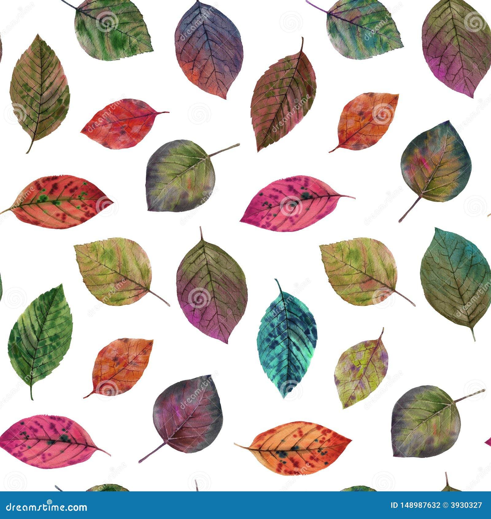 Eleganccy li?cie dla projekta kolor li?cie jesieni? Bezszwowy akwarela wz?r li?cie