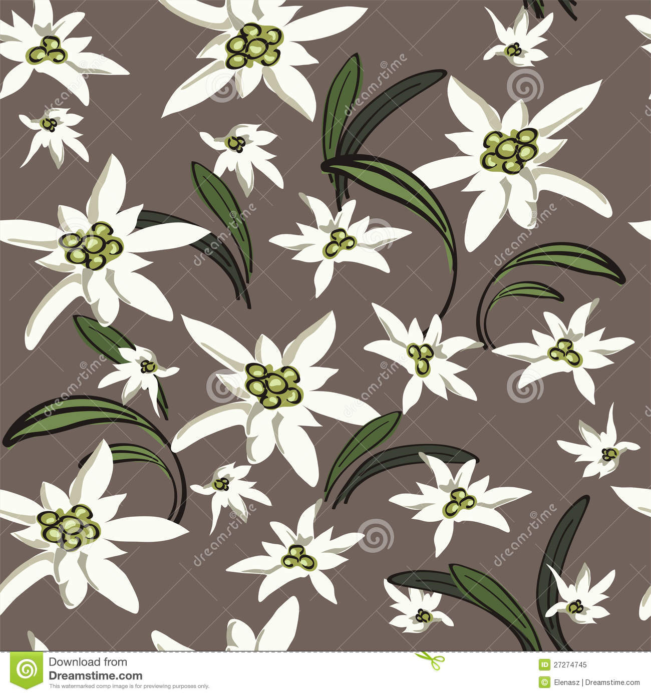 Elegance Background With Edelweiss Flowers Stock Vector