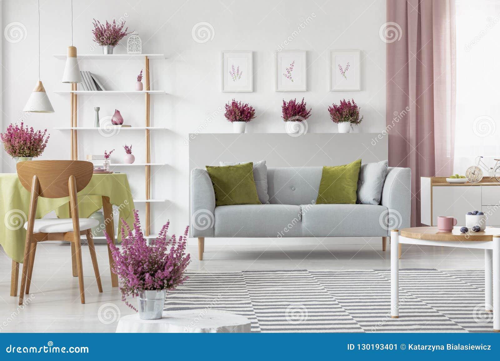 Elegancki żywy pokój z wrzosem na meble, eleganckim drewnianym stoliku do kawy, wzorzystym dywaniku i popielatej leżance szelfowy