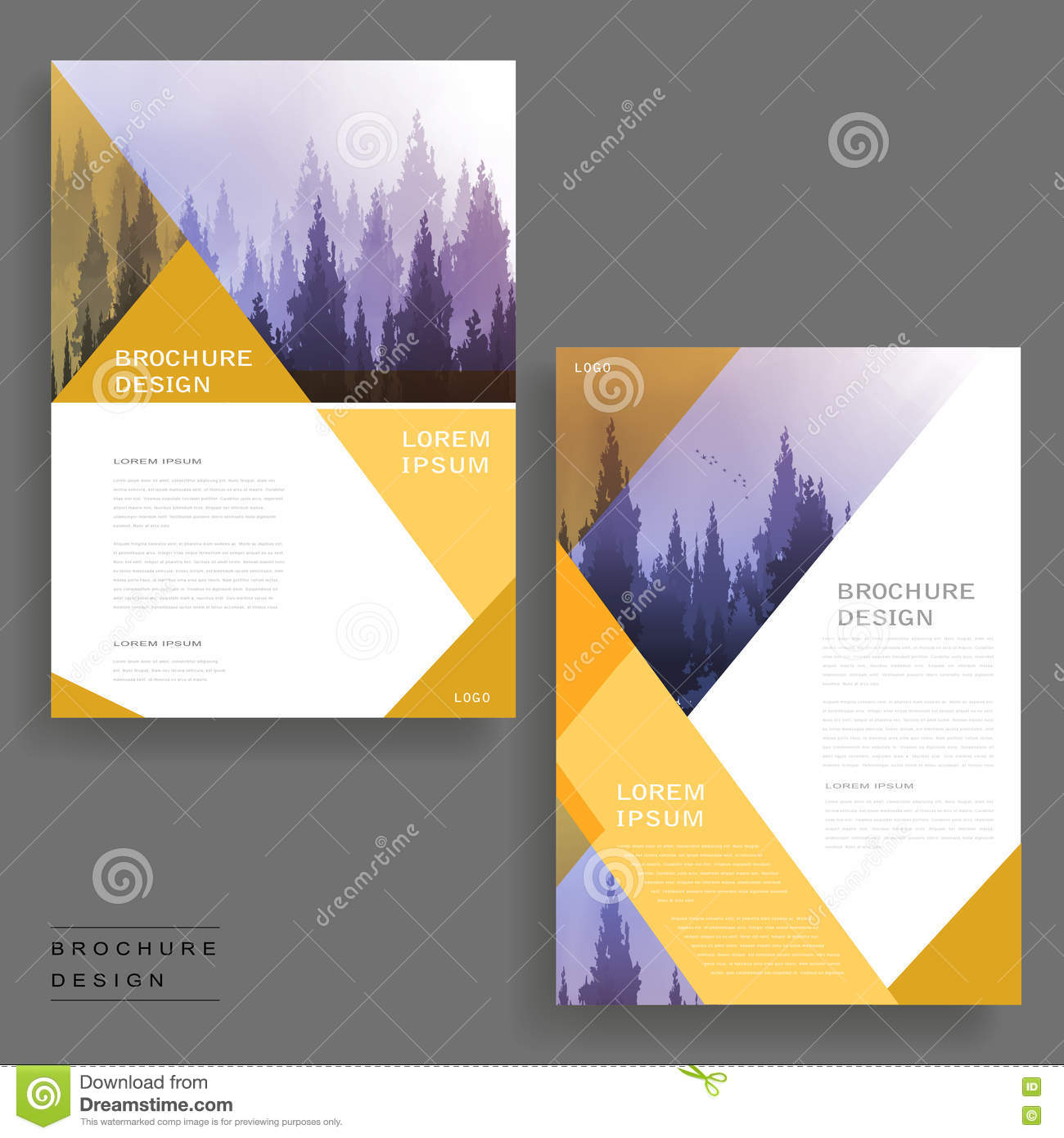 Elegant Brochure Design Stock Illustration Illustration Of Print