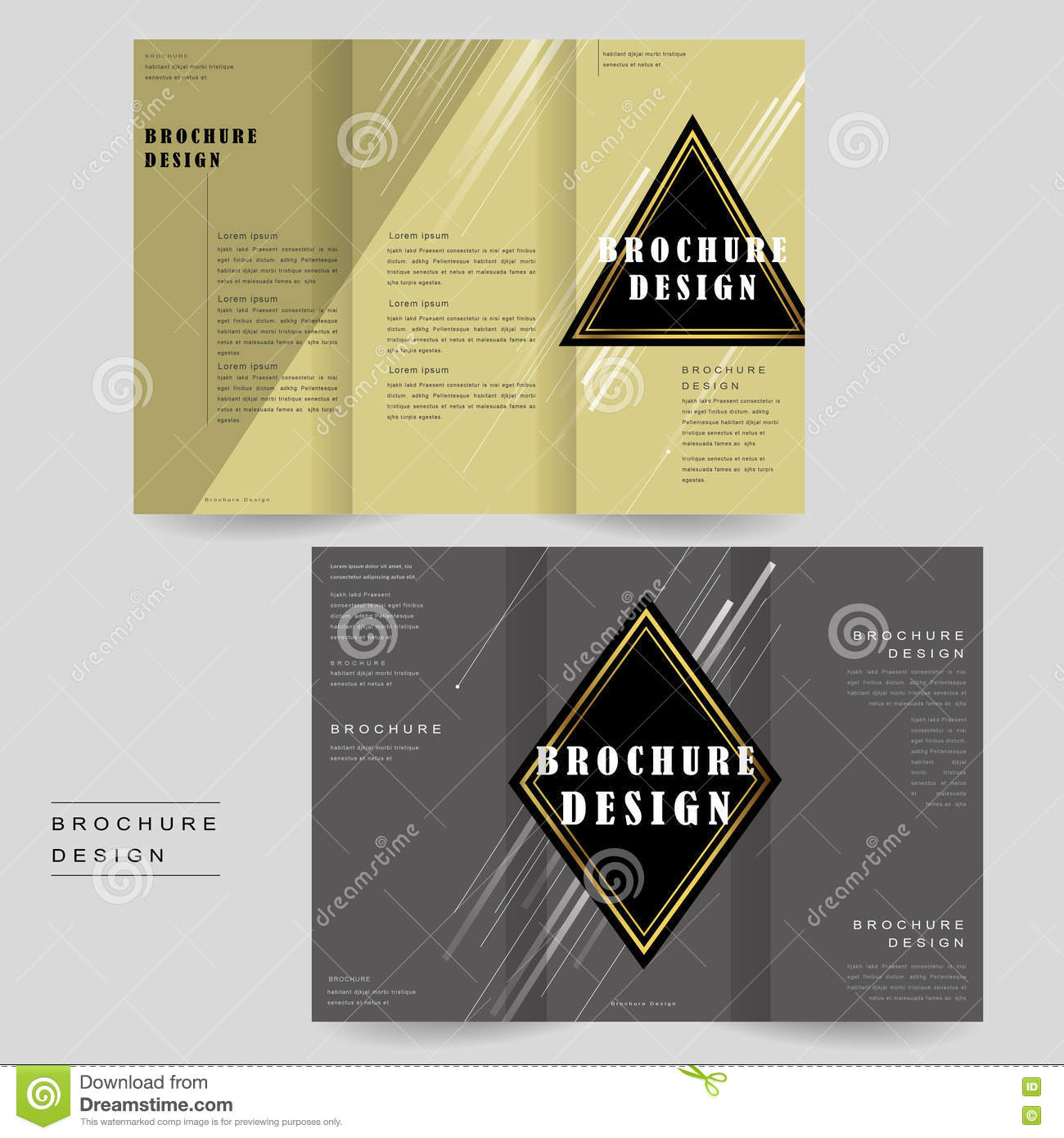 Elegant Brochure Template Stock Vector Illustration Of Concept