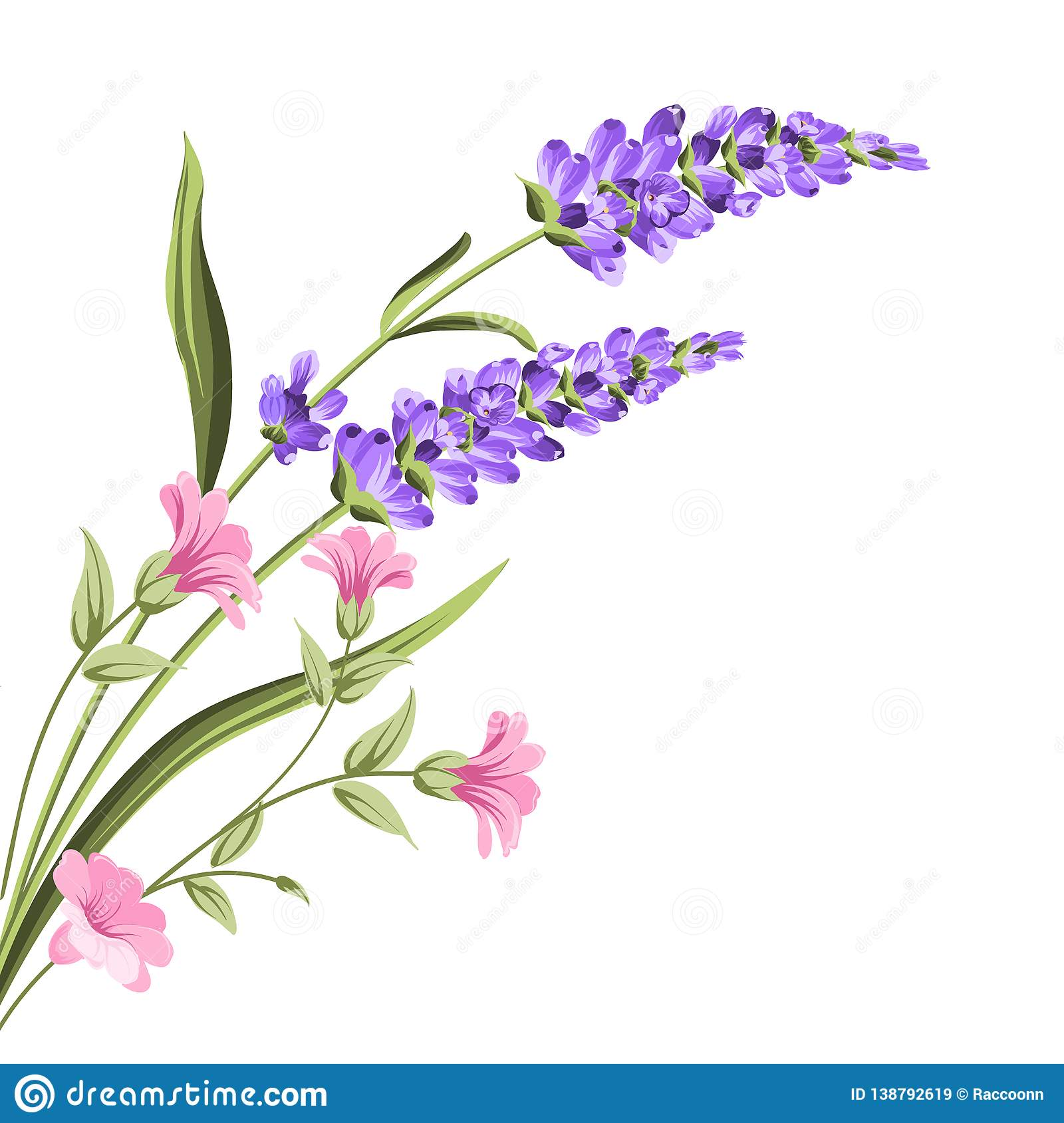 Elegant Card With Lavender Flowers Stock Vector Illustration Of French Greeting 138792619