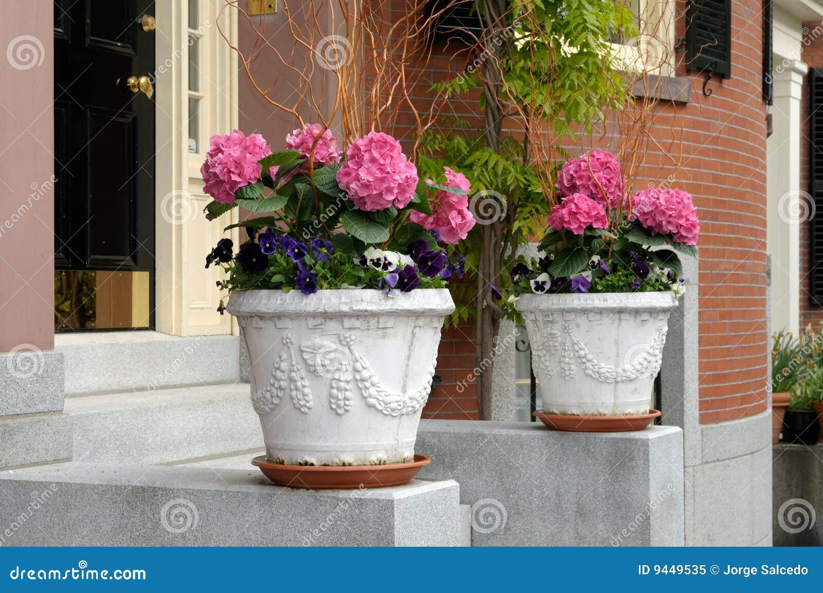 Elegant flower pots framing house entrance stock image for House plant pots