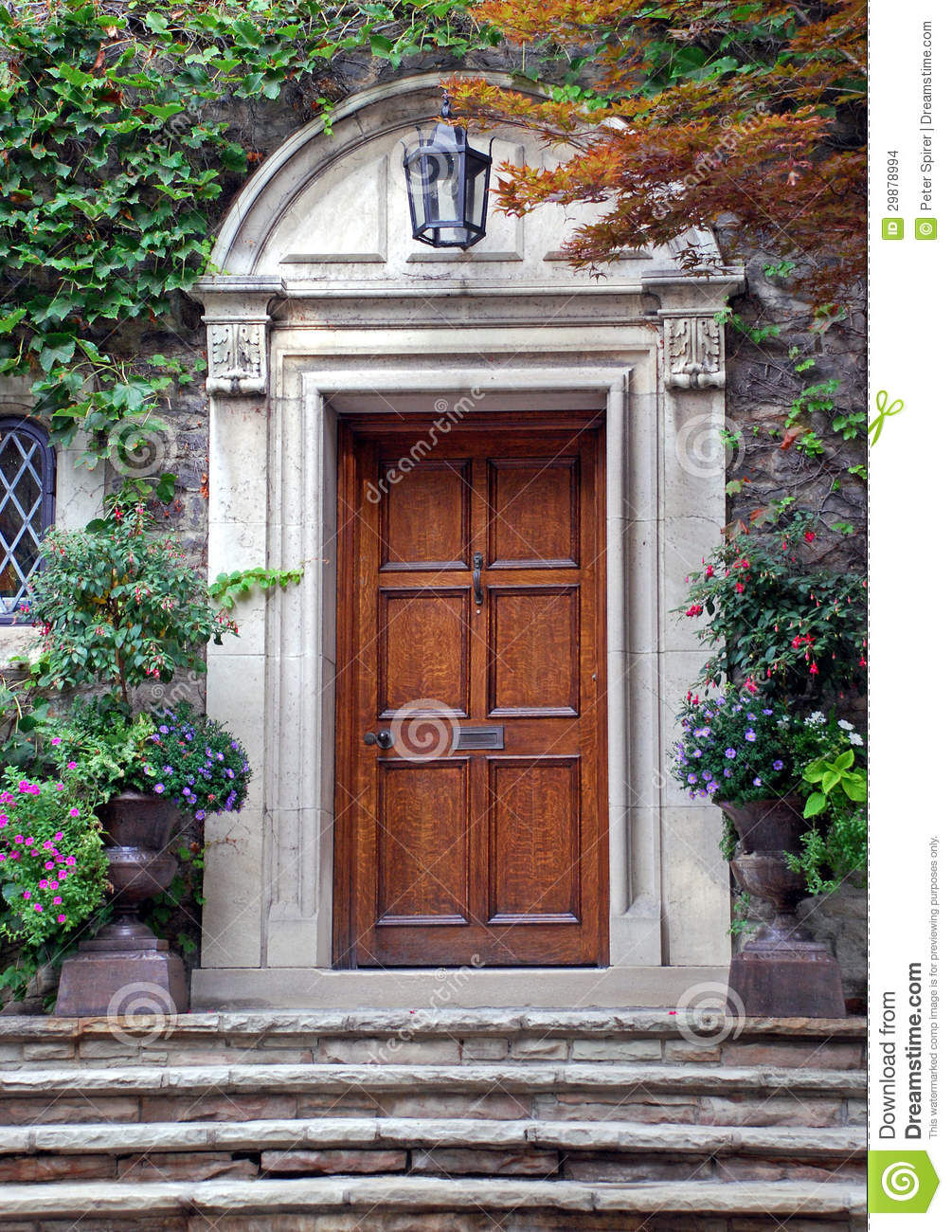 Elegant Front Door With Ivy Stock Images - Image: 29878994