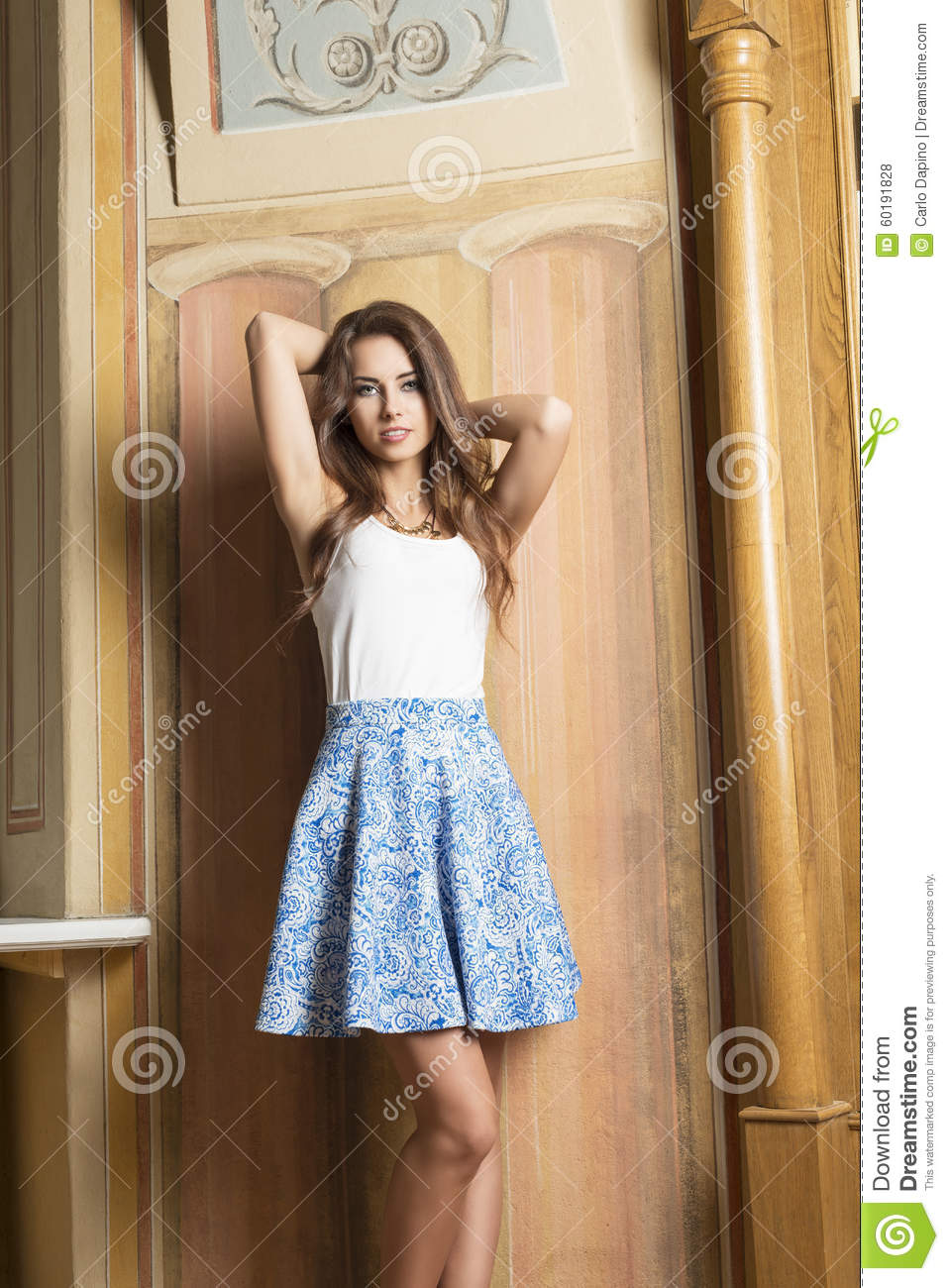 Elegant Girl In Fashion Pose Stock Photo Image 60191828