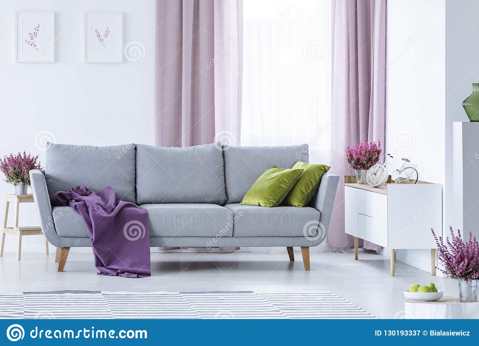 Elegant Living Room With Big Comfortable Grey Couch With Olive Green Pillows And Violet Blanket In The Middle Stock Image Image Of Lilac Estate 130193337