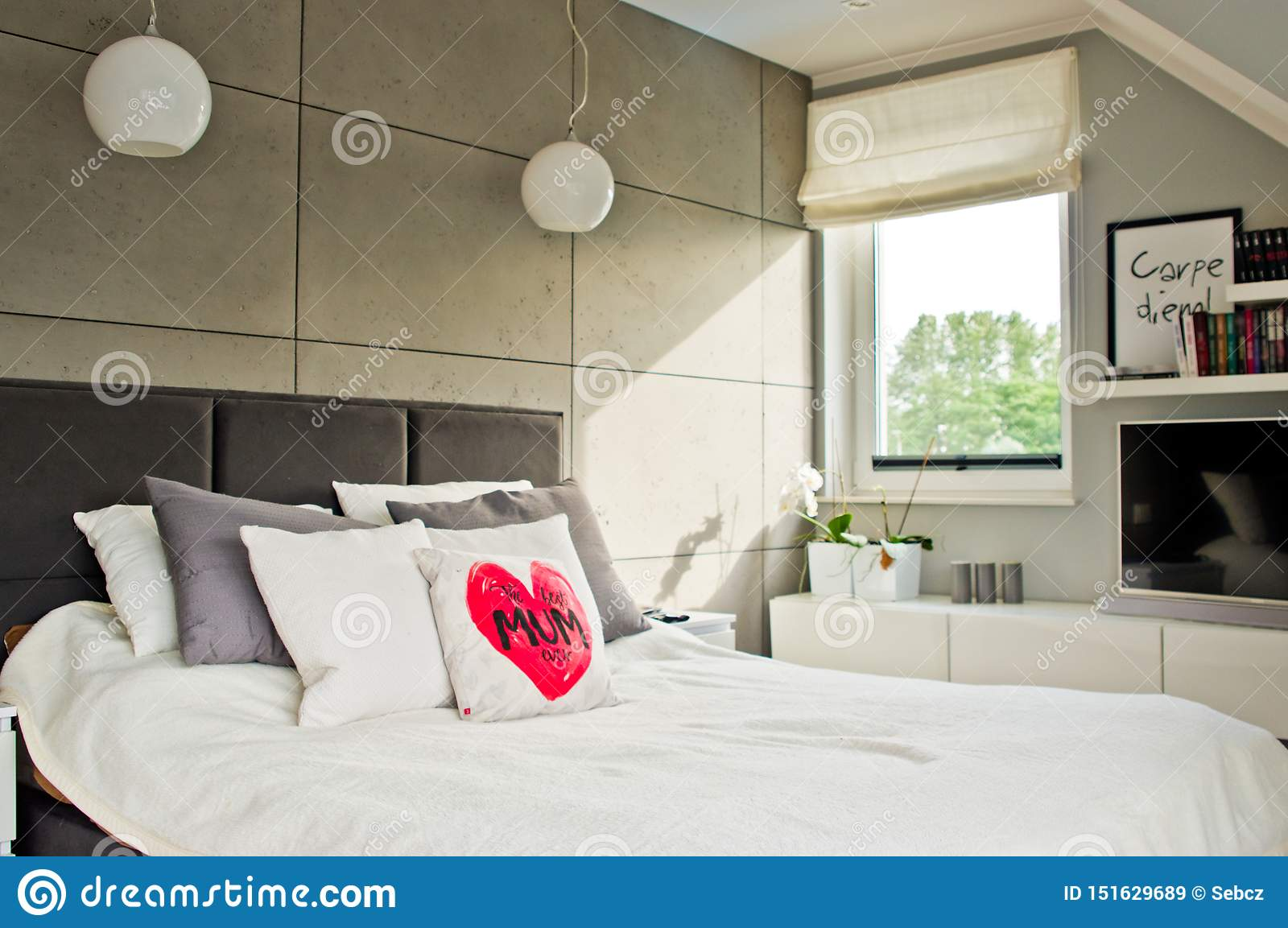 Elegant Modern Bedroom With Natural Daylight From The Window Stock Image Image Of Window Television 151629689