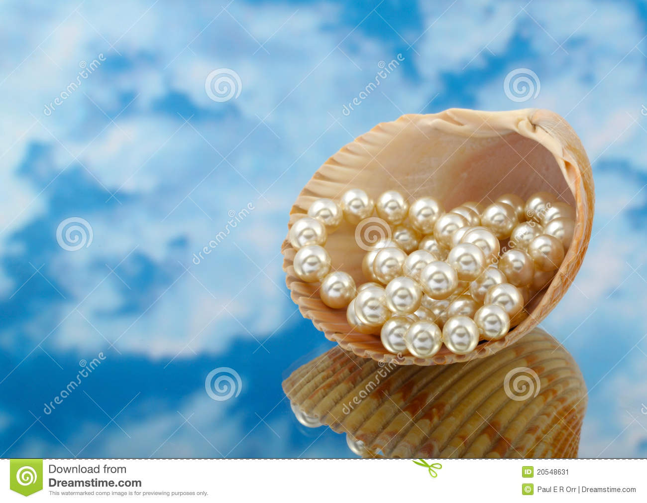 Elegant pearls over in shell with sky and reflection very shallow ... Open Oyster Shell With Pearl