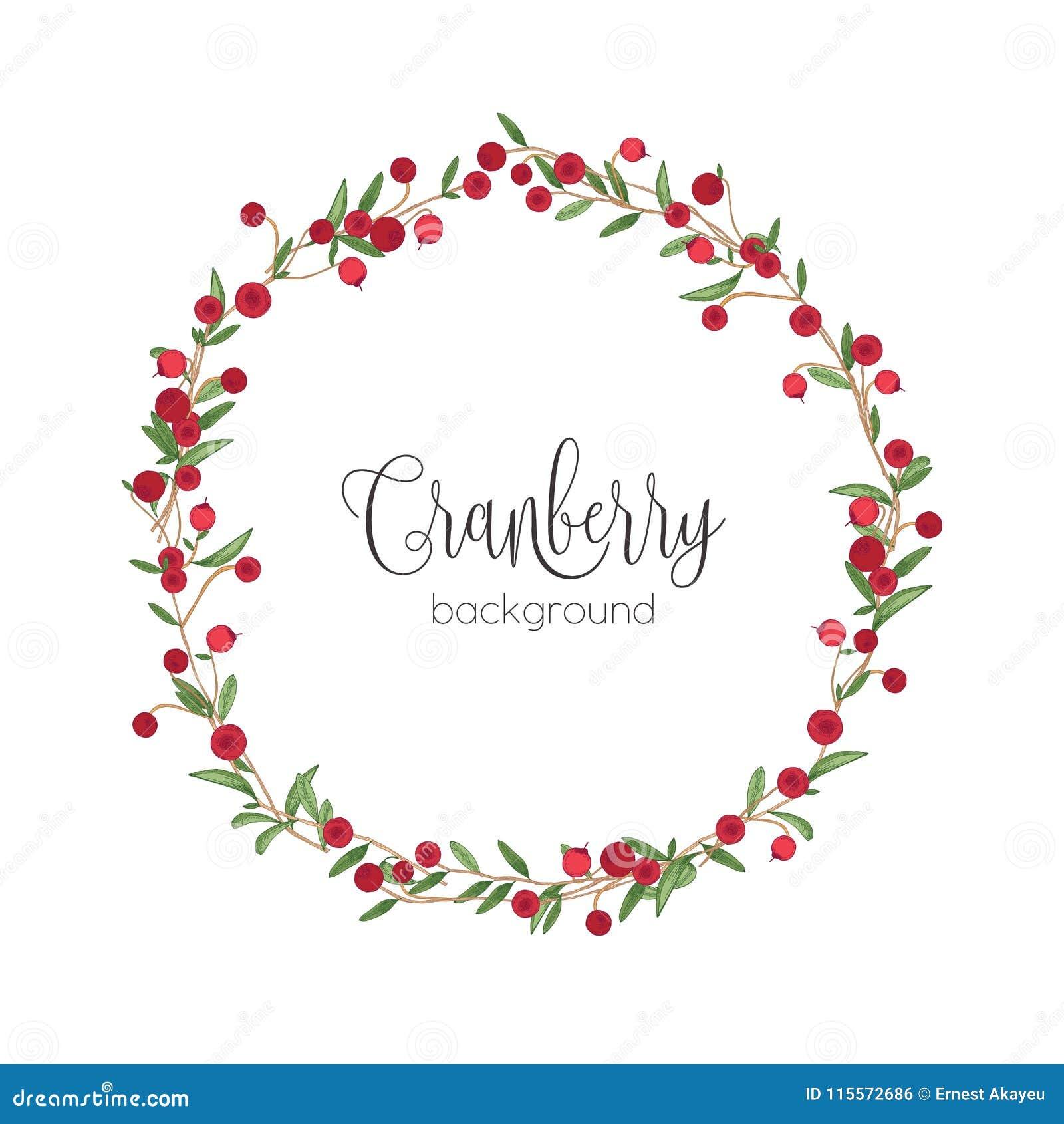 Elegant Round Wreath Or Circular Frame Made Of Cranberry