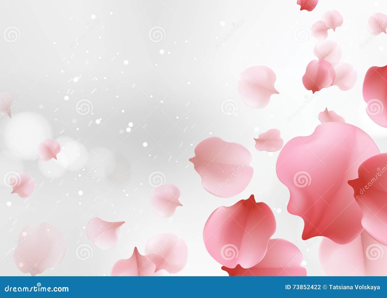 Elegant Soft Pink Color Sakura Flowers Background Stock