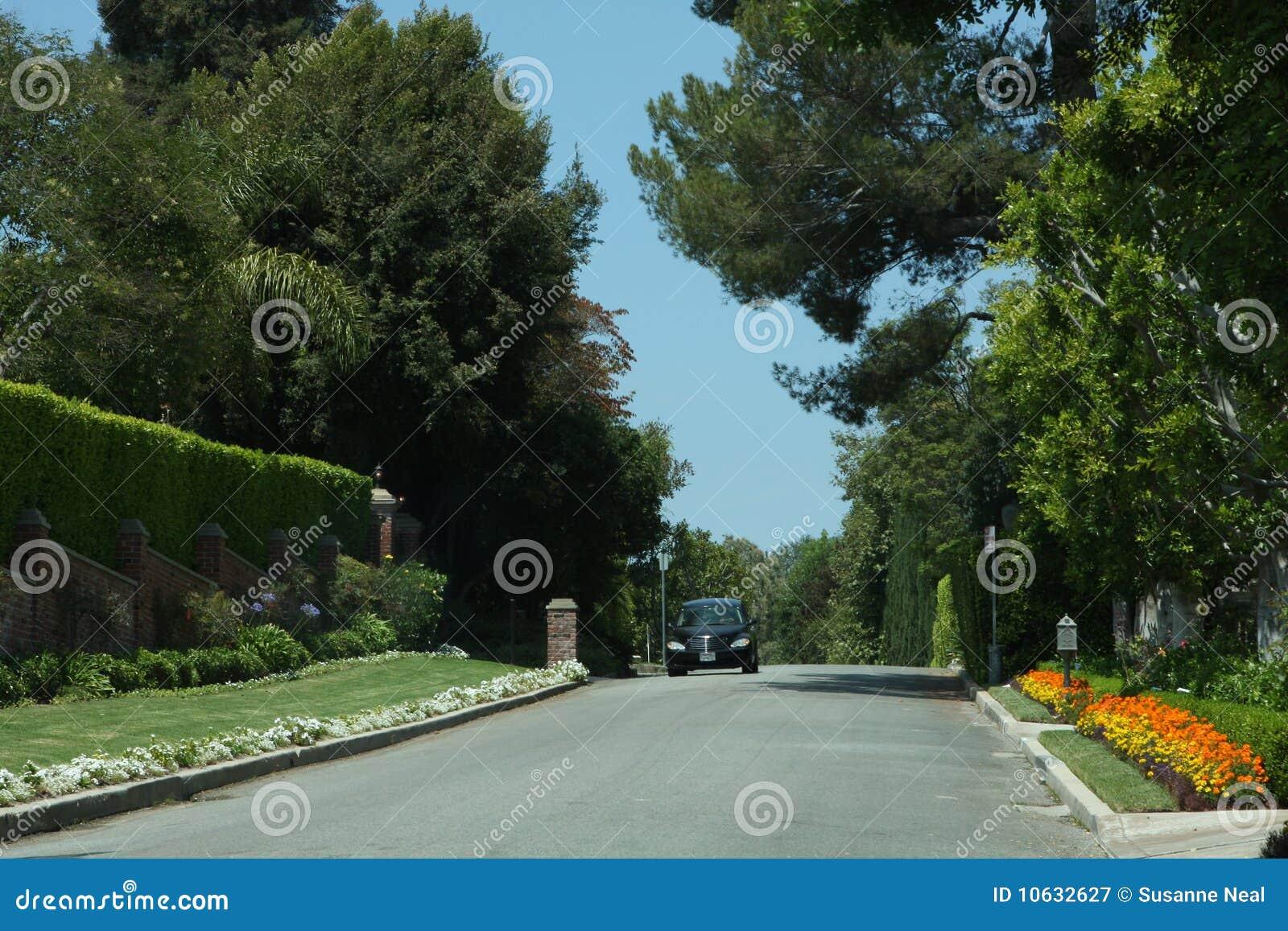 Elegant Street In Bel Air California Stock Image Image