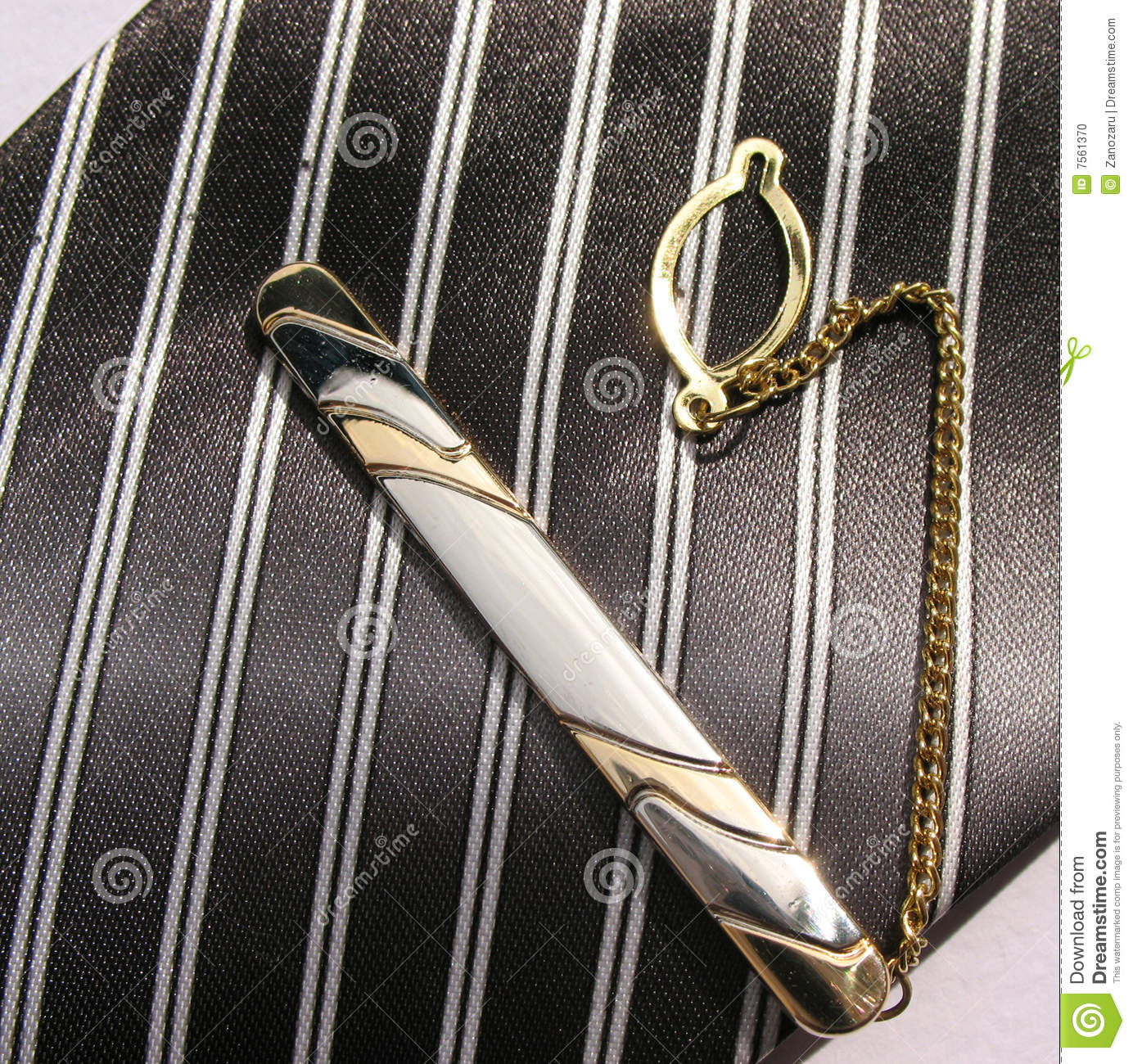 Elegant ties with a clips