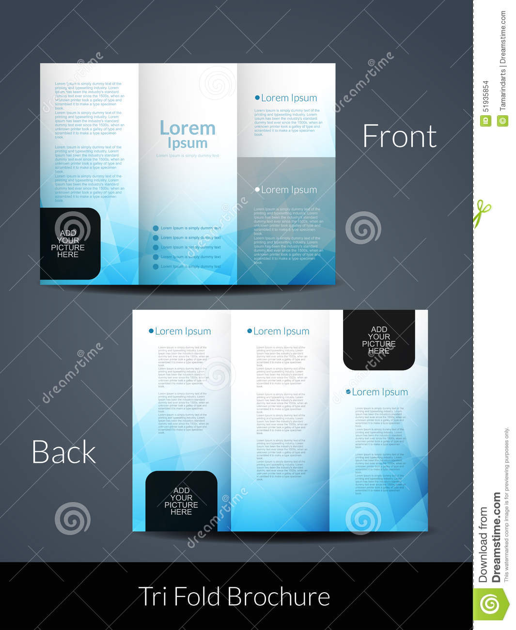 elegant tri fold brochure design template stock vector