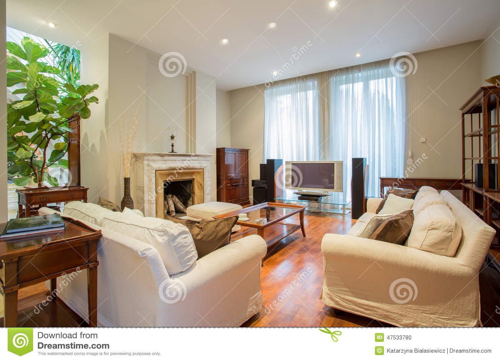 Elegant vardagsrum med spisen arkivfoto bild 47533780 for Living elegante