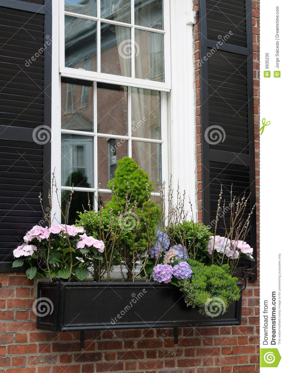 Elegant Window Box Stock Photo Image 9935230