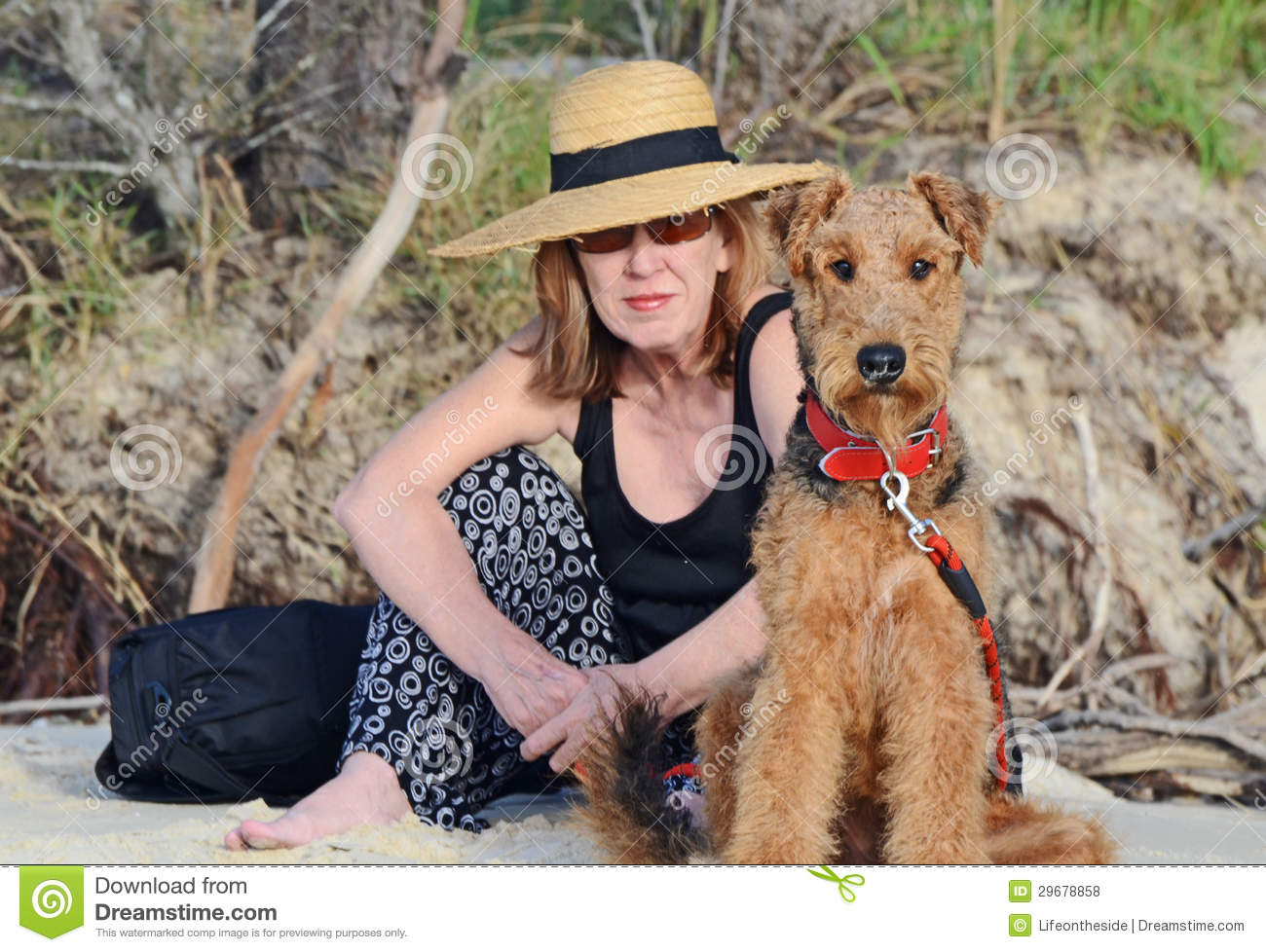 Elegant Woman & Airedale Terrier Dog On Vacation Royalty ...