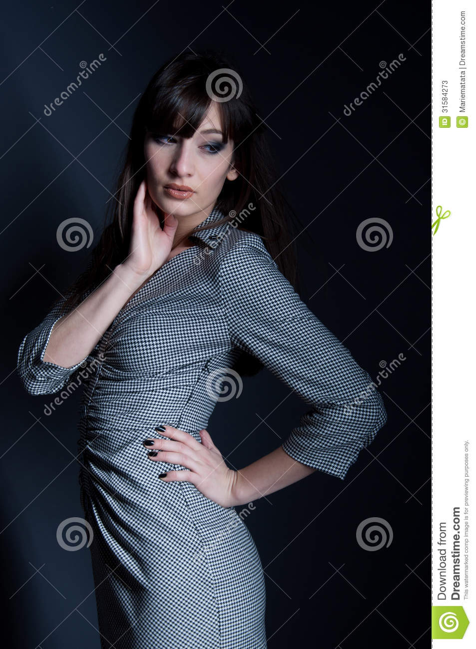 Elegant Woman In Checked Dress Stock Image Image 31584273