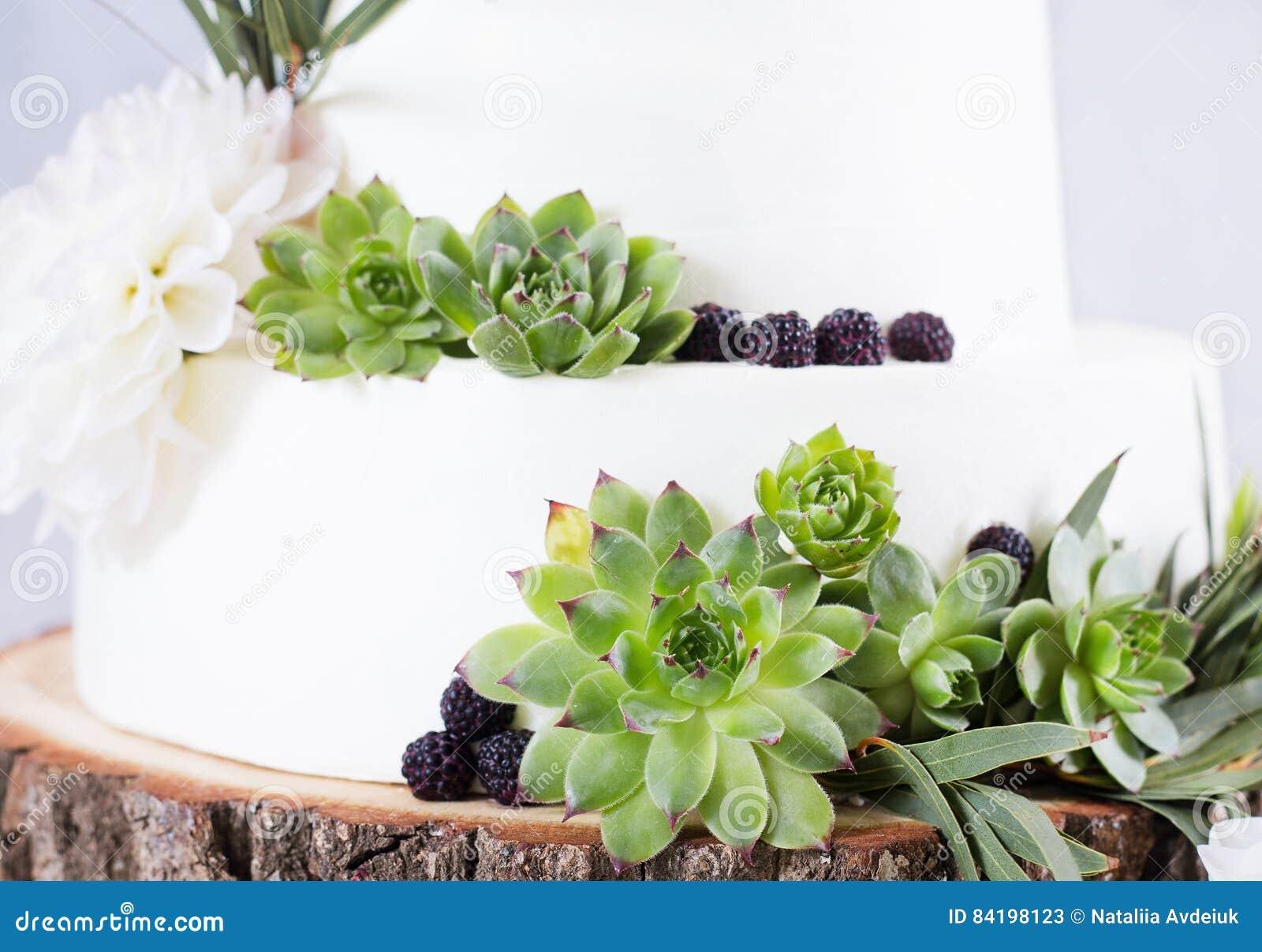 Elegante Hochzeitstorte Mit Blumen Und Succulents Stockbild Bild