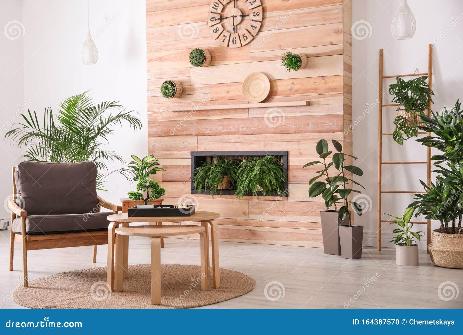 Elegante Salón Interior Con Sillón, Plantas Y Jardín Zen En