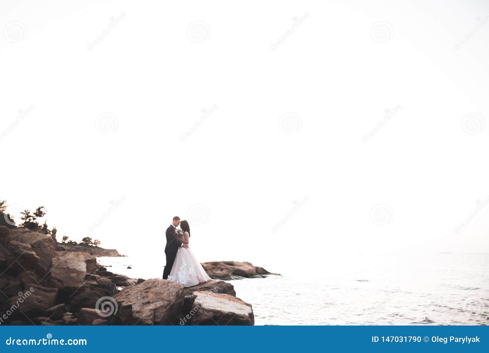 Elegante stilvolle gl?ckliche Hochzeitspaare, Braut, herrlicher Br?utigam auf dem Hintergrund von Meer und Himmel