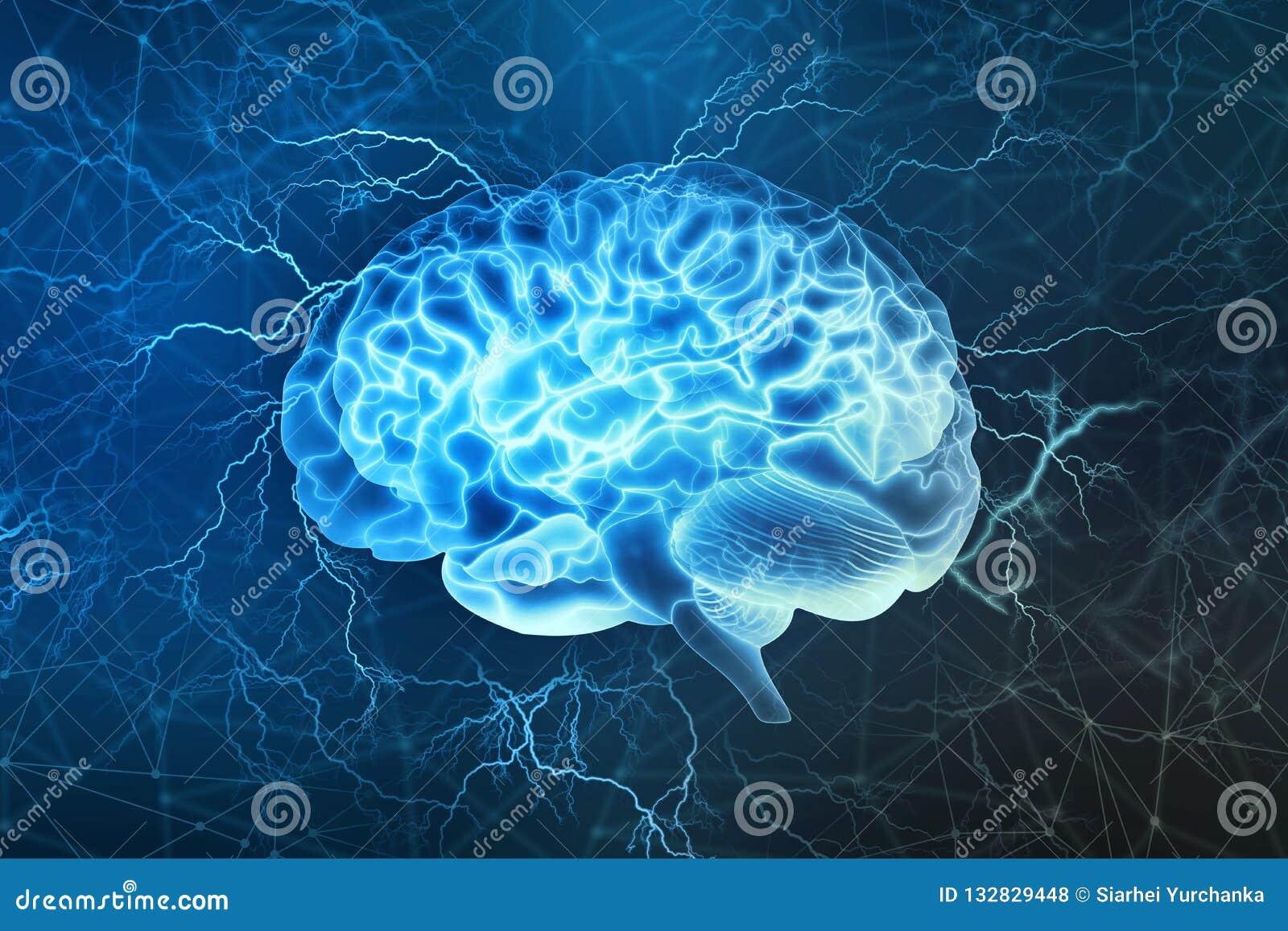 Elektrische Aktivität des menschlichen Gehirns