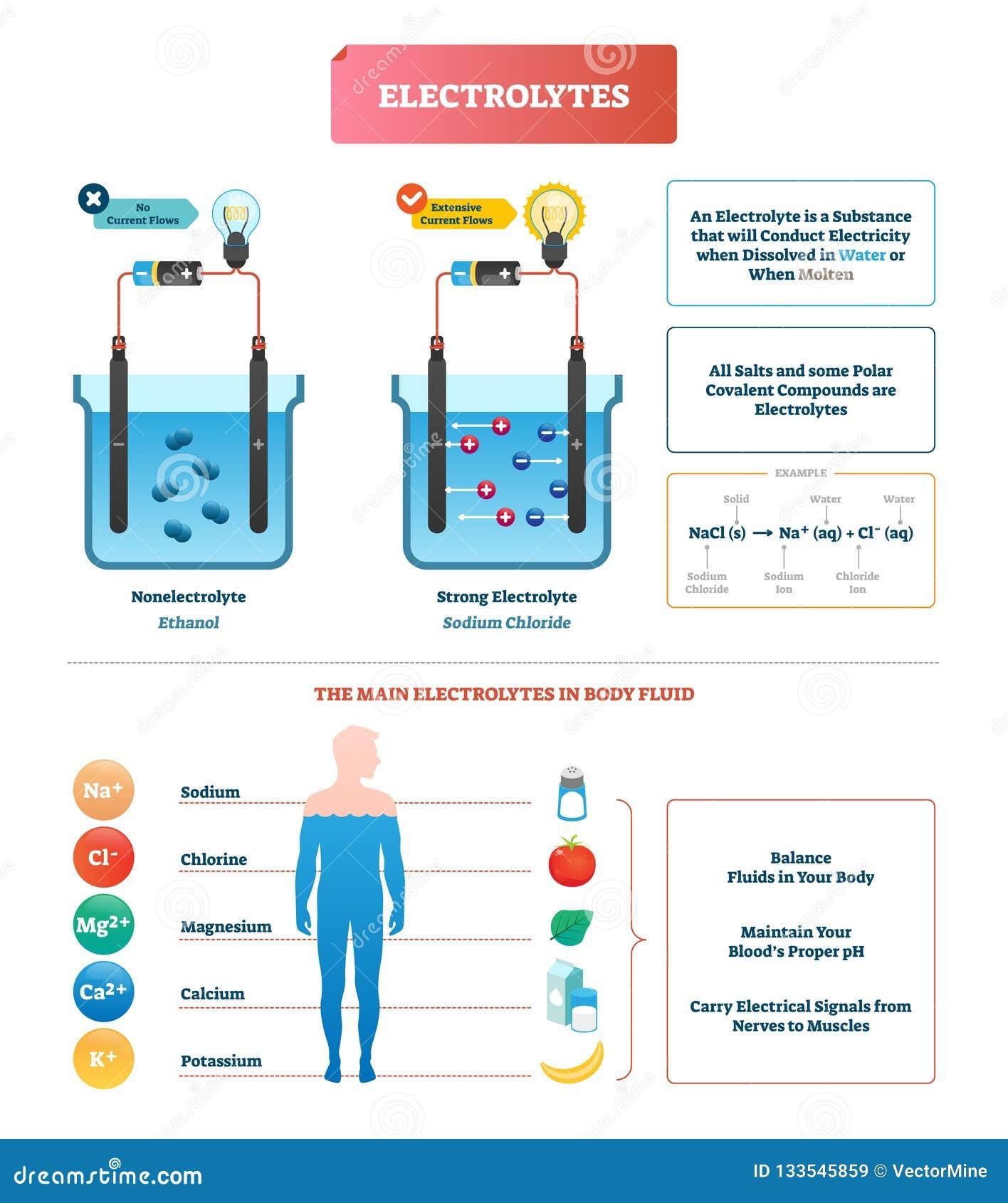 Elektrolity badają wektorową ilustrację Ciało fluidu diagrama przylepiający etykietkę przykład