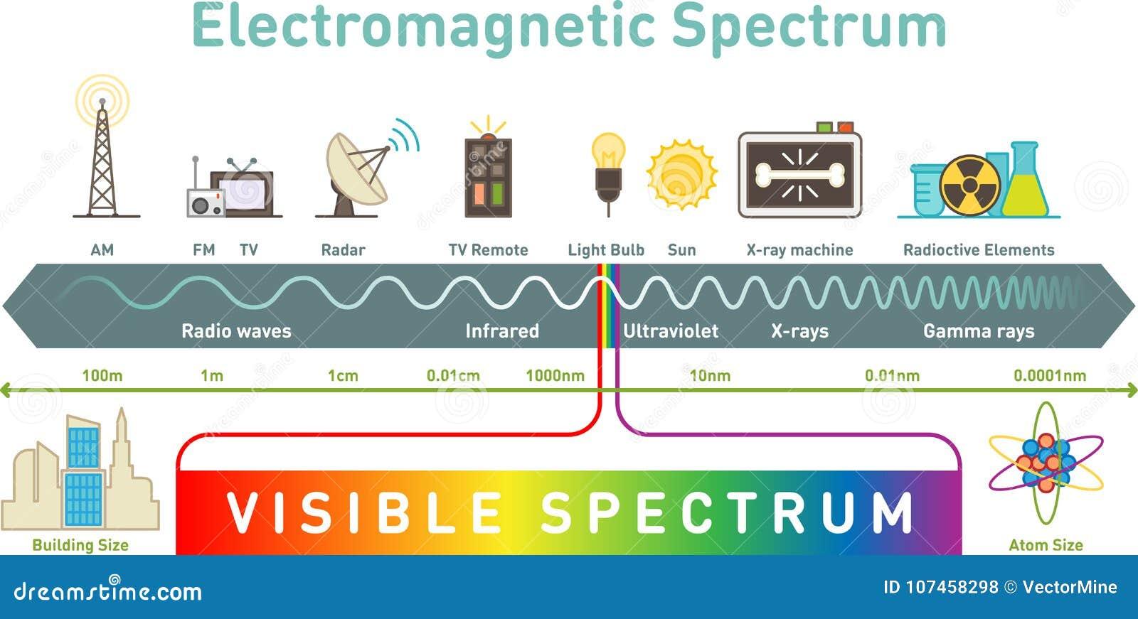 Elektromagnetycznego widma infographic diagram, wektorowa ilustracja