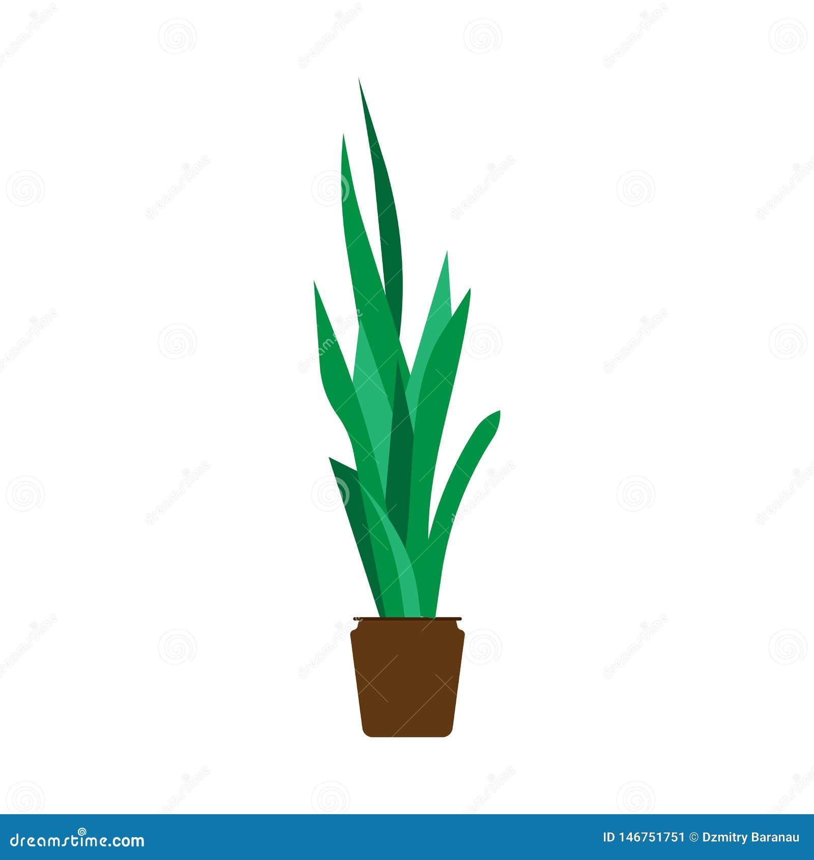 Element-Vektorblumenikone des Blumentopfs im Garten arbeitende dekorative B?ROvase der flachen Illustration des Gr?npflanzehauses
