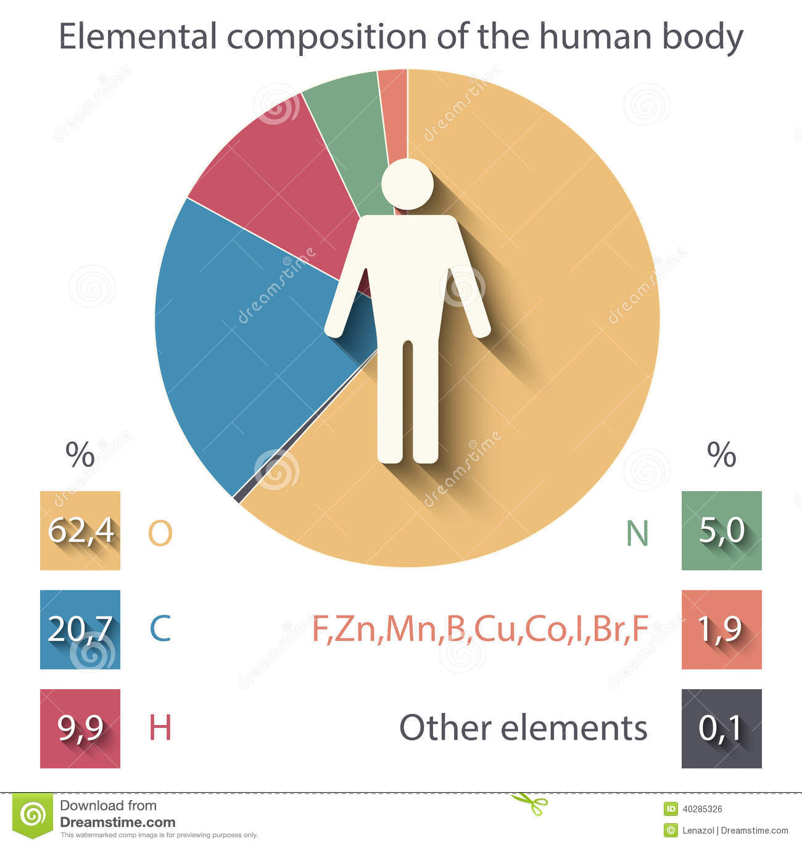 Elementare Zusammensetzung Des Menschlichen Körpers Vektor Abbildung ...