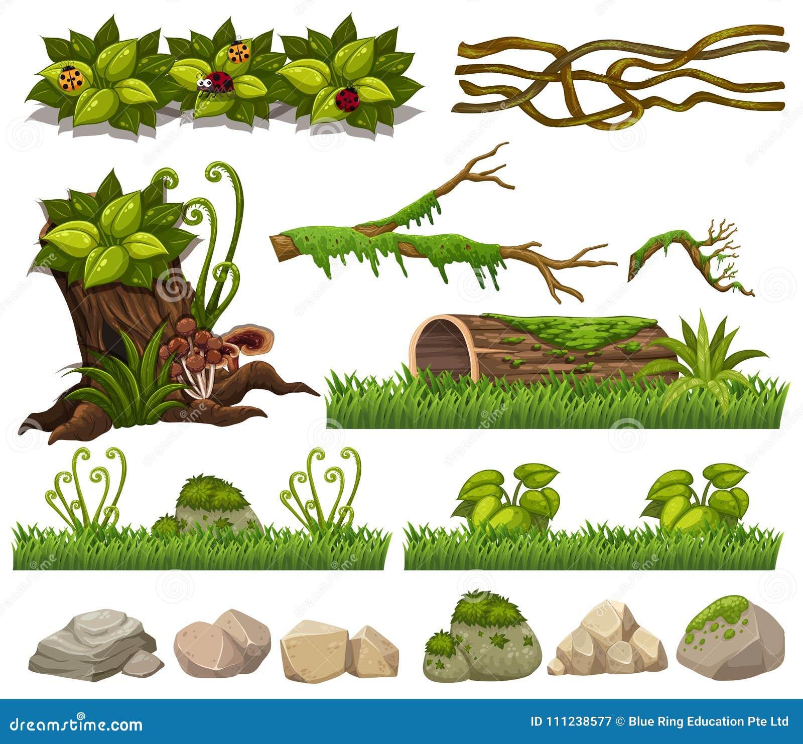 Elementi della natura con erba e rocce