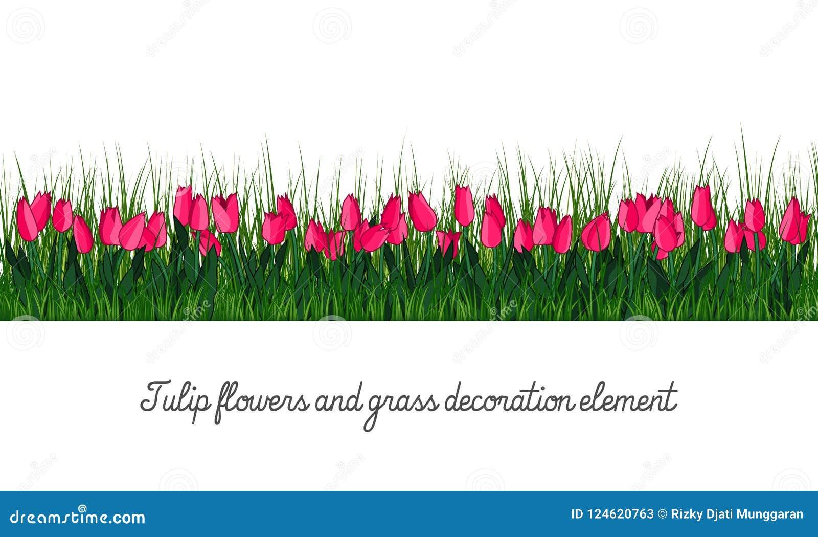 Elemento de la decoración del tulipán y de la hierba