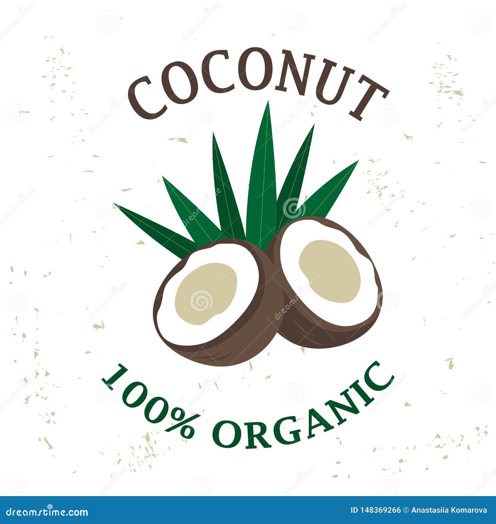 Elemento del diseño de empaquetado del vector - fruta del coco